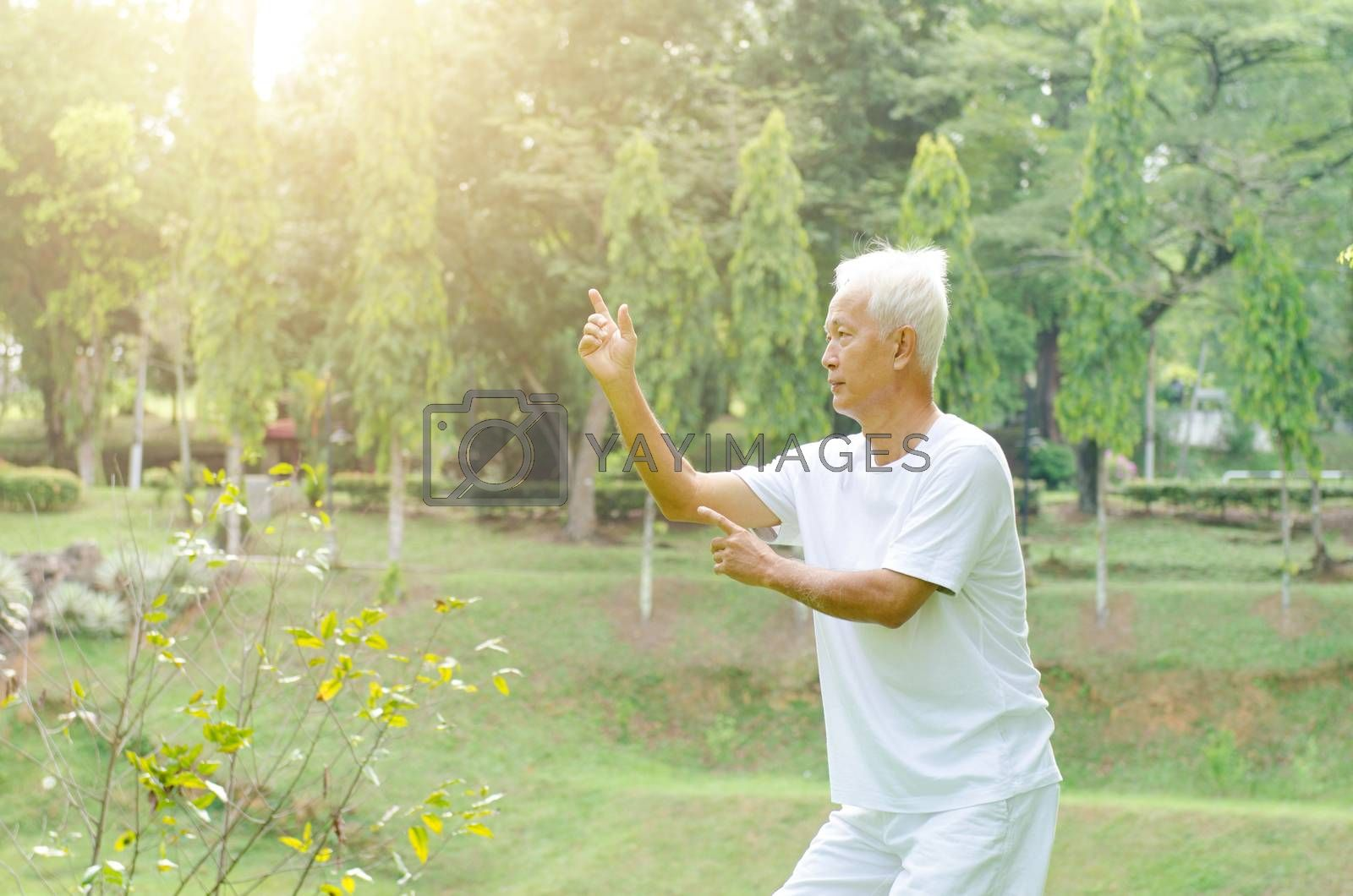 Portrait of healthy fitness grey hair Asian old man practicing tai chi at outdoor park in morning.