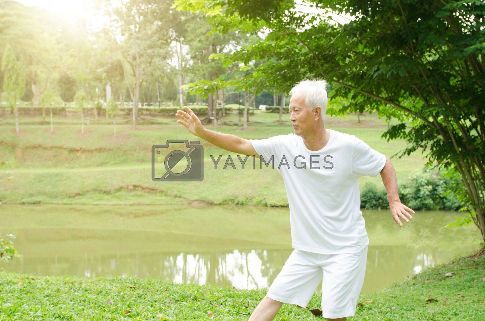 Portrait of fitness white hair Asian senior man practicing martial arts at outdoor park in morning.