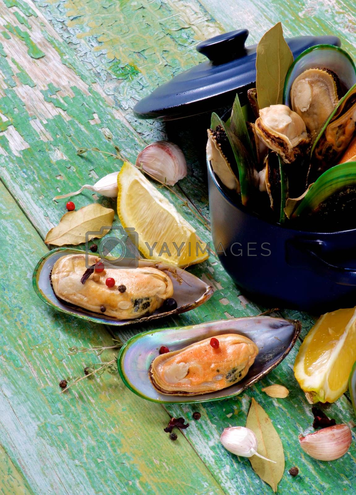 Arrangement of Fresh Boiled Green Mussels with Spices and Lemon in Dark Saucepan closeup on Green Wooden background