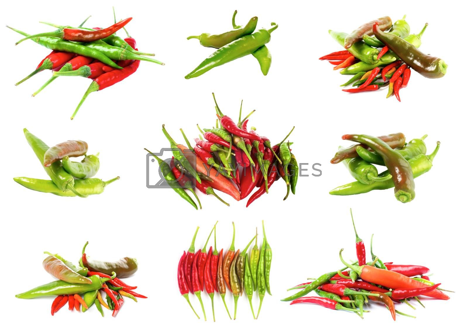 Collection of Various Fresh Shiny Red, Orange and Green Chili Peppers isolated on White background