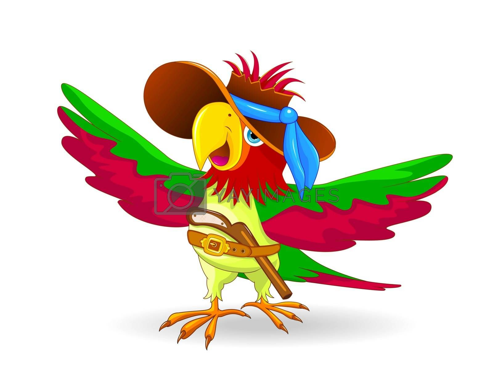 Cartoon parrot pirate with hat on head on white background. Parrot in a hat and with a gun behind his belt.