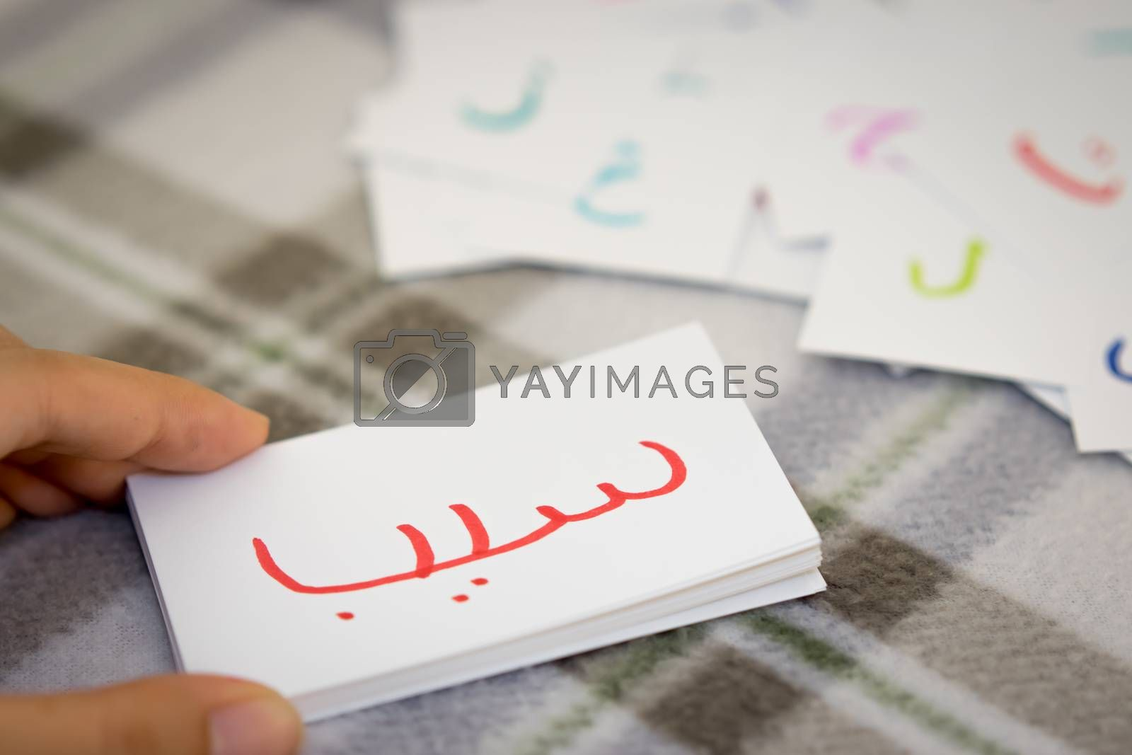 Persian; Learning the New Word with the Alphabet Cards; Writing  by EikoTsuttiy