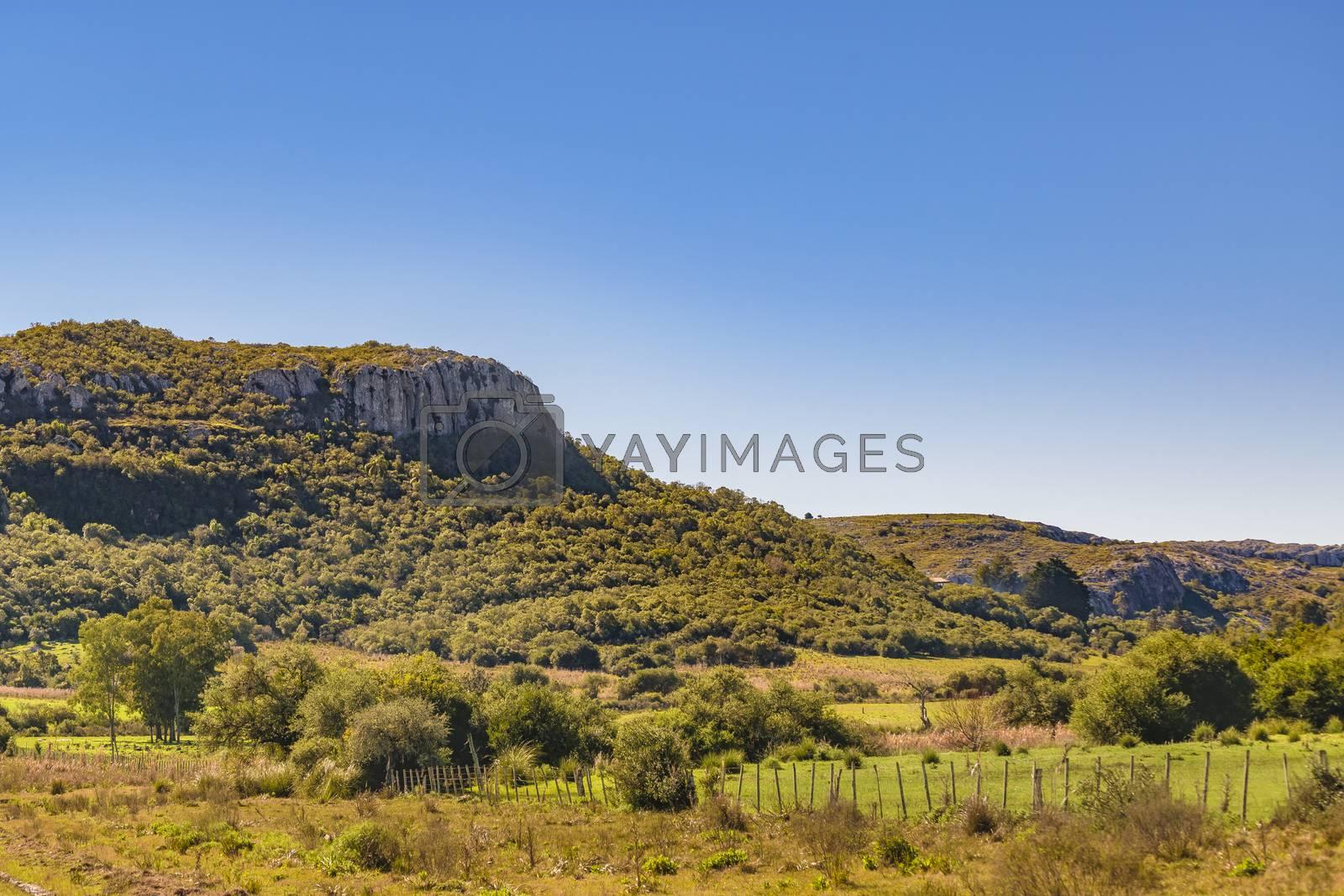 Countryside landscape environment located in Maldonado city outskirts, Uruguay