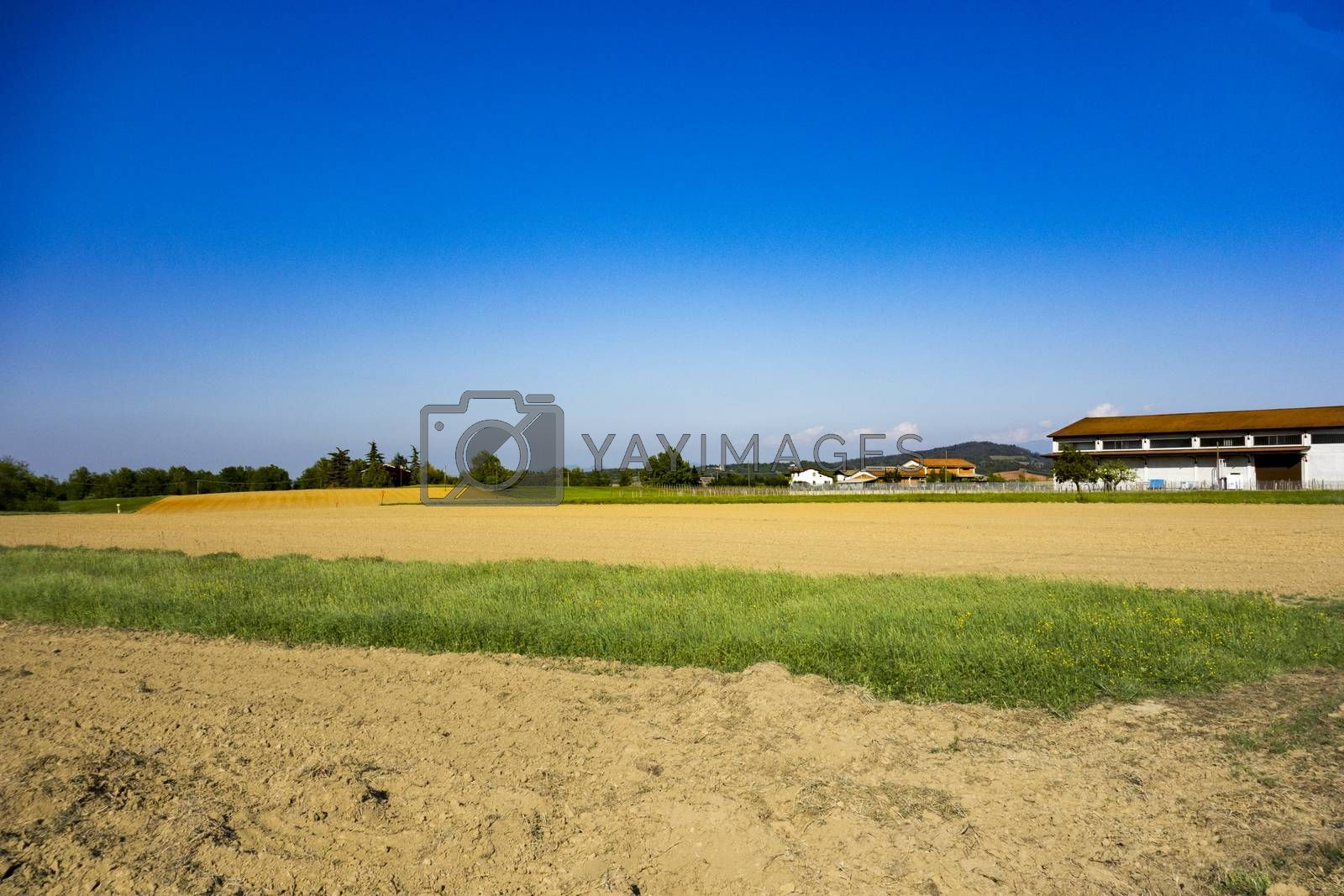 Royalty free image of fields, cellar and village  by carla720