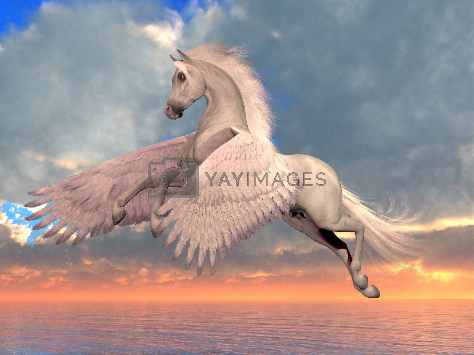 An Arabian Pegasus horse rises on powerful wings to fly over the ocean on a sunny day.
