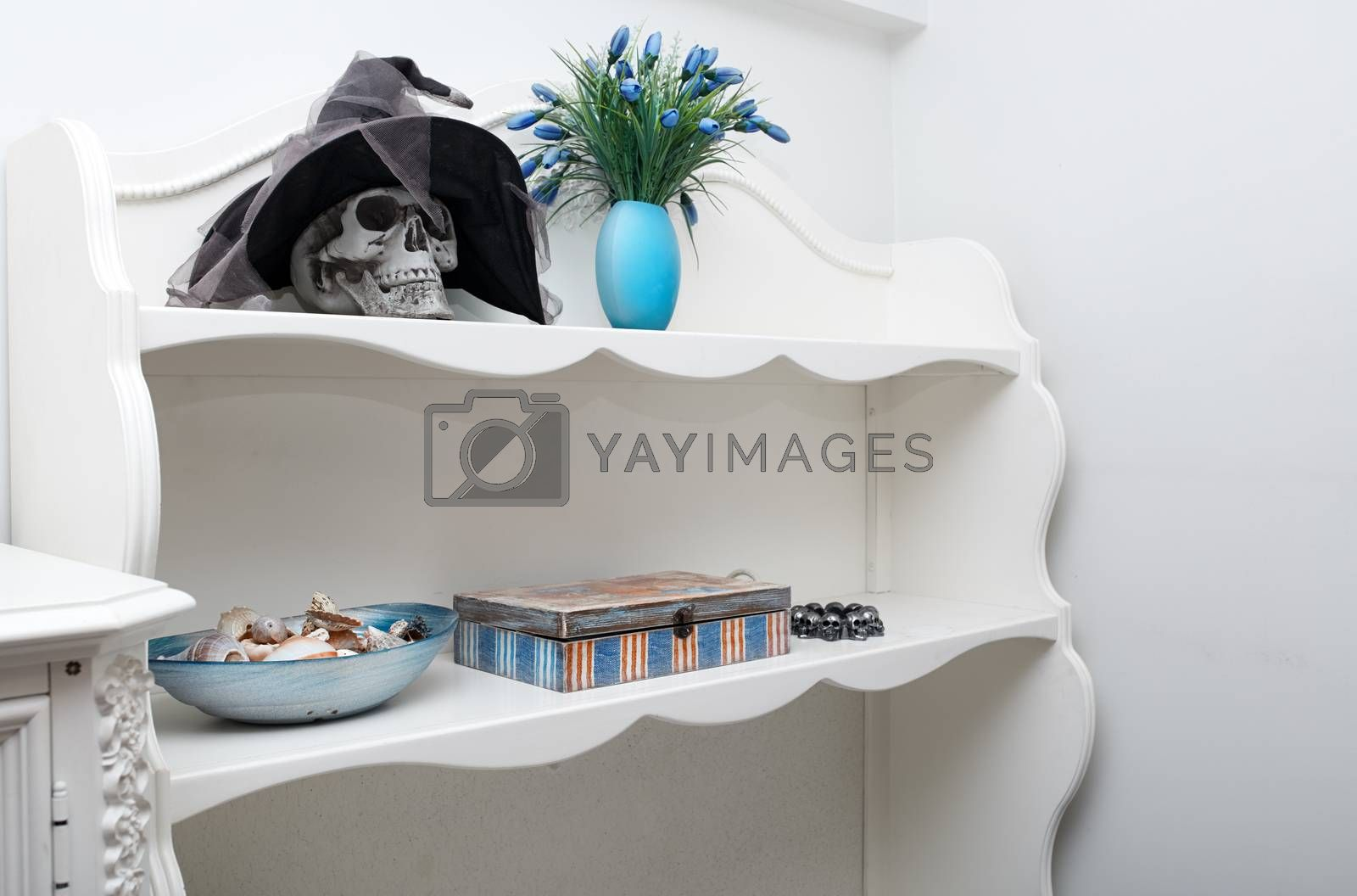 Human skull in a white cabinet. Halloween theme by Novic