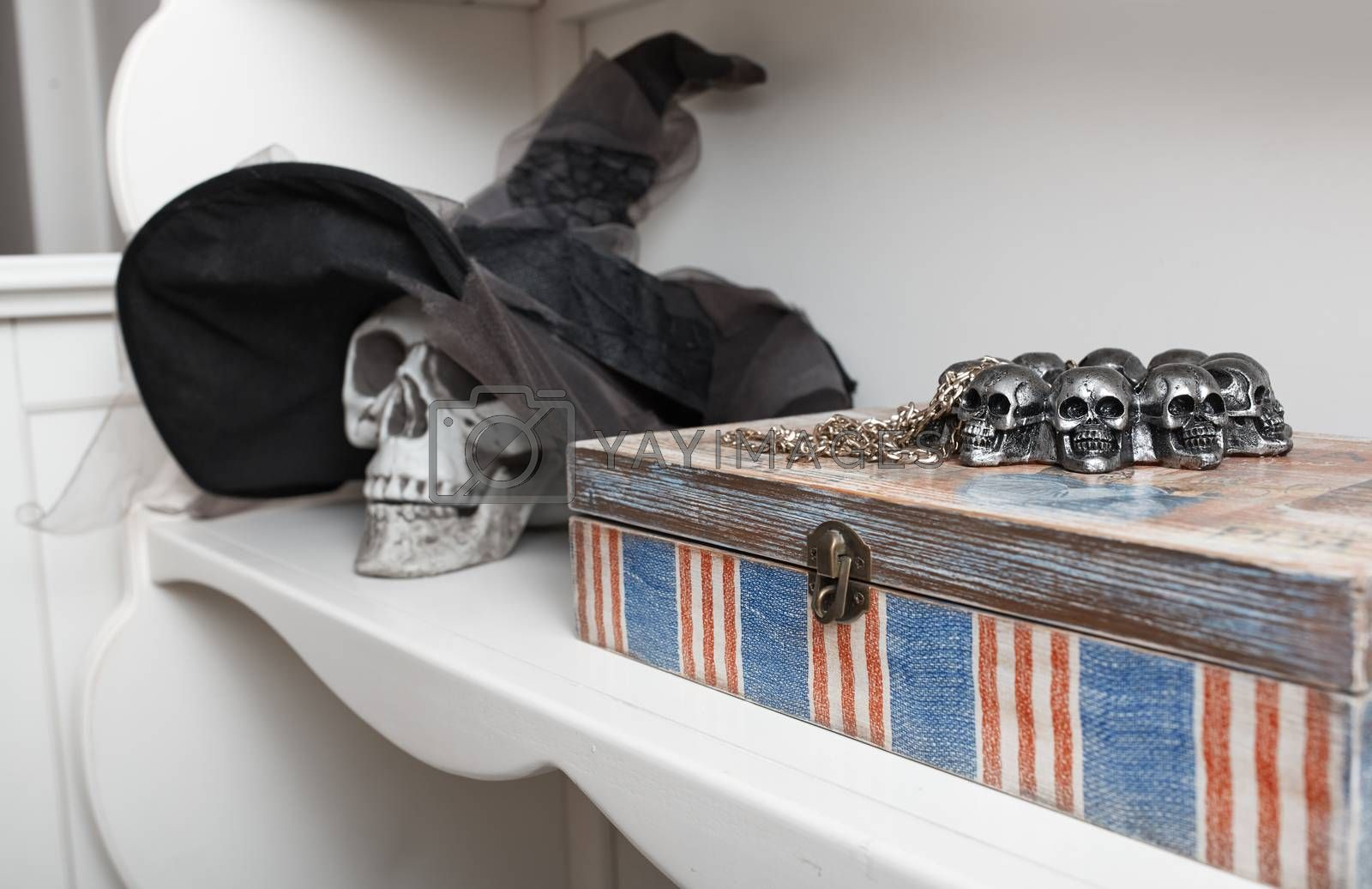 Human skull in a white cabinet. Halloween theme