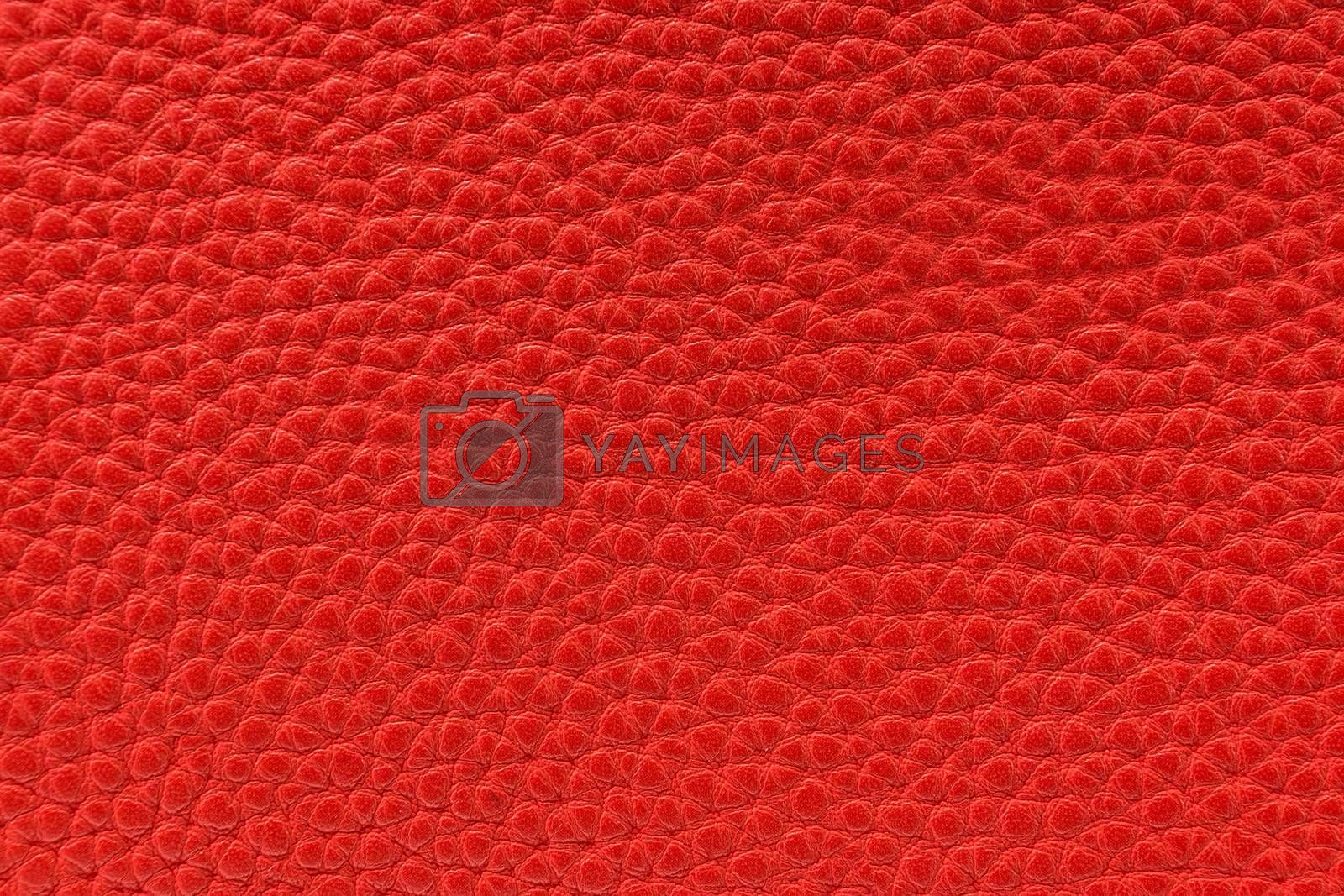 the texture of the skin is red, Studio, still life photography
