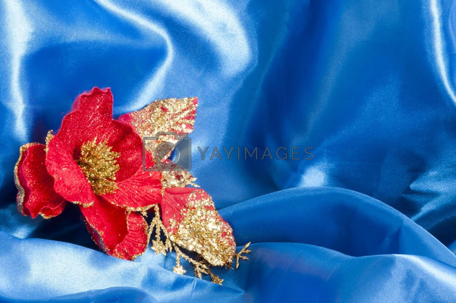 a Christmas decorations on a blue background