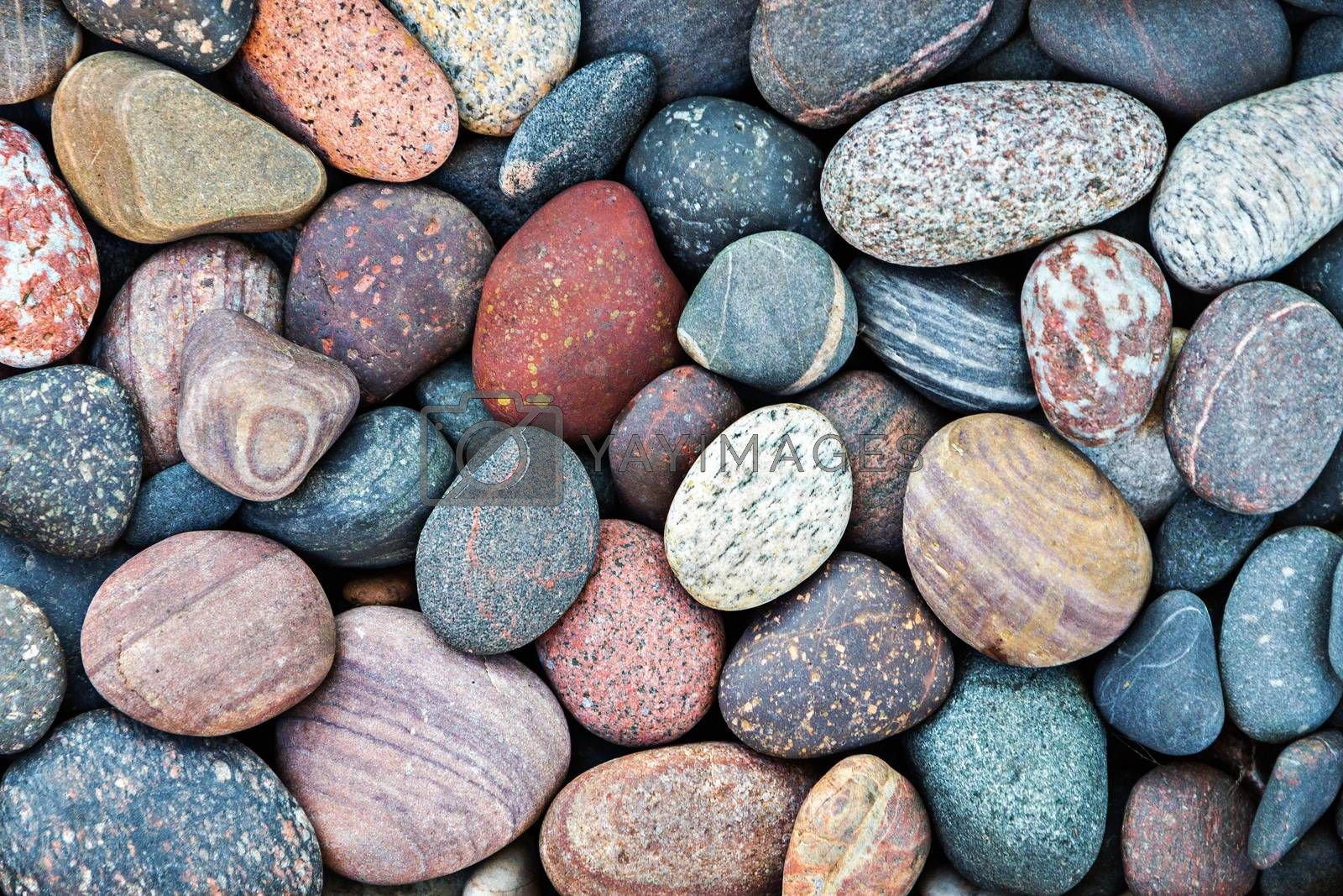 Abstract pebble stones background by Vaidas Bucys