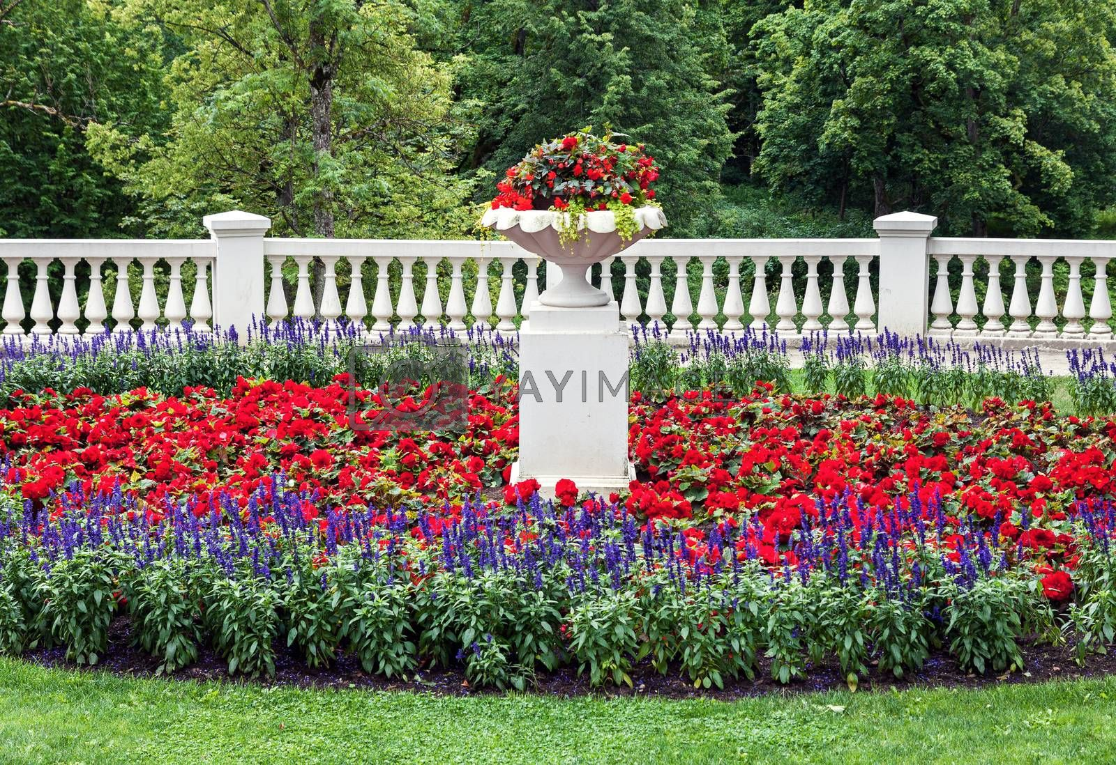 Landscaped flowerbed with classic architecture details   by Vaidas Bucys