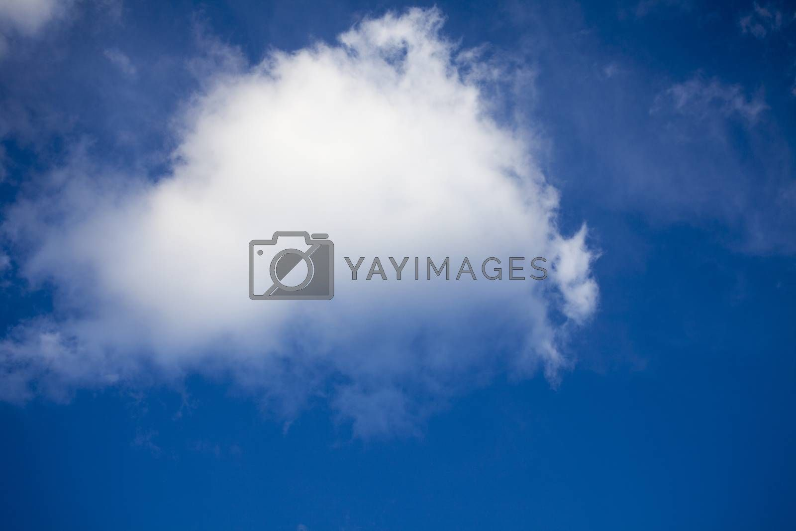White clouds on the blue sky during the sunny day.