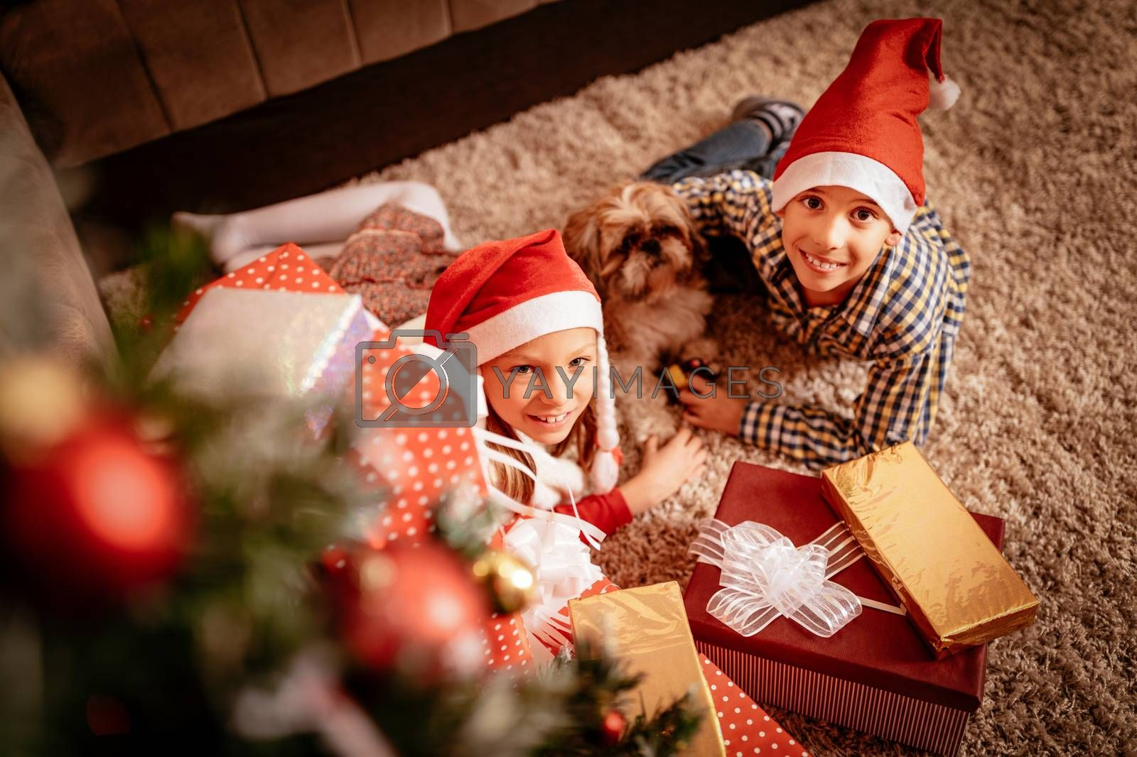 Top view of cute smiling girl, boy and their little dog with many presents in a Christmas time at the home. Looking at camera. Top view.