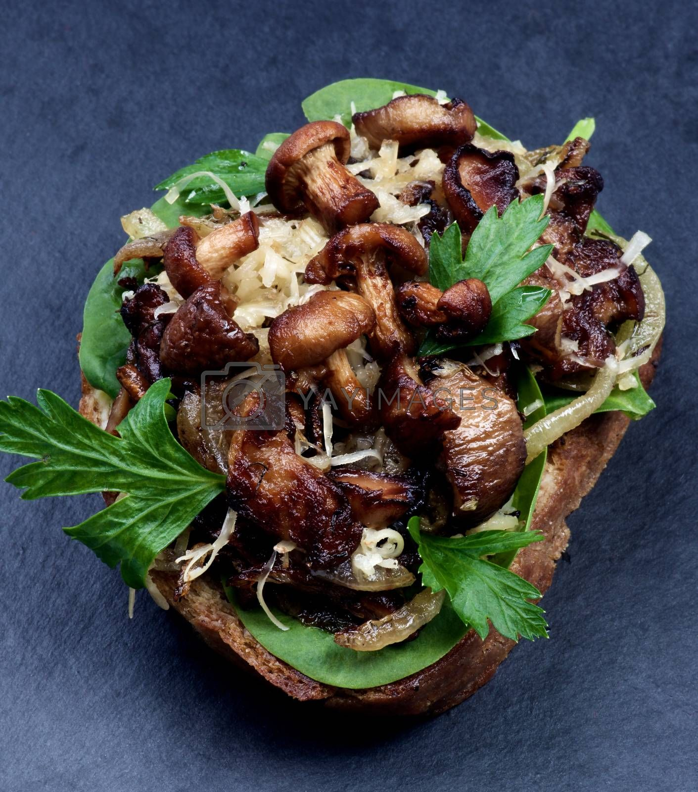 Delicious Roasted Sandwiches Crostini with Mushrooms Chanterelles, Cheese, Parsley and Sliced Onion on Whole Grain Bread closeup on Slate background