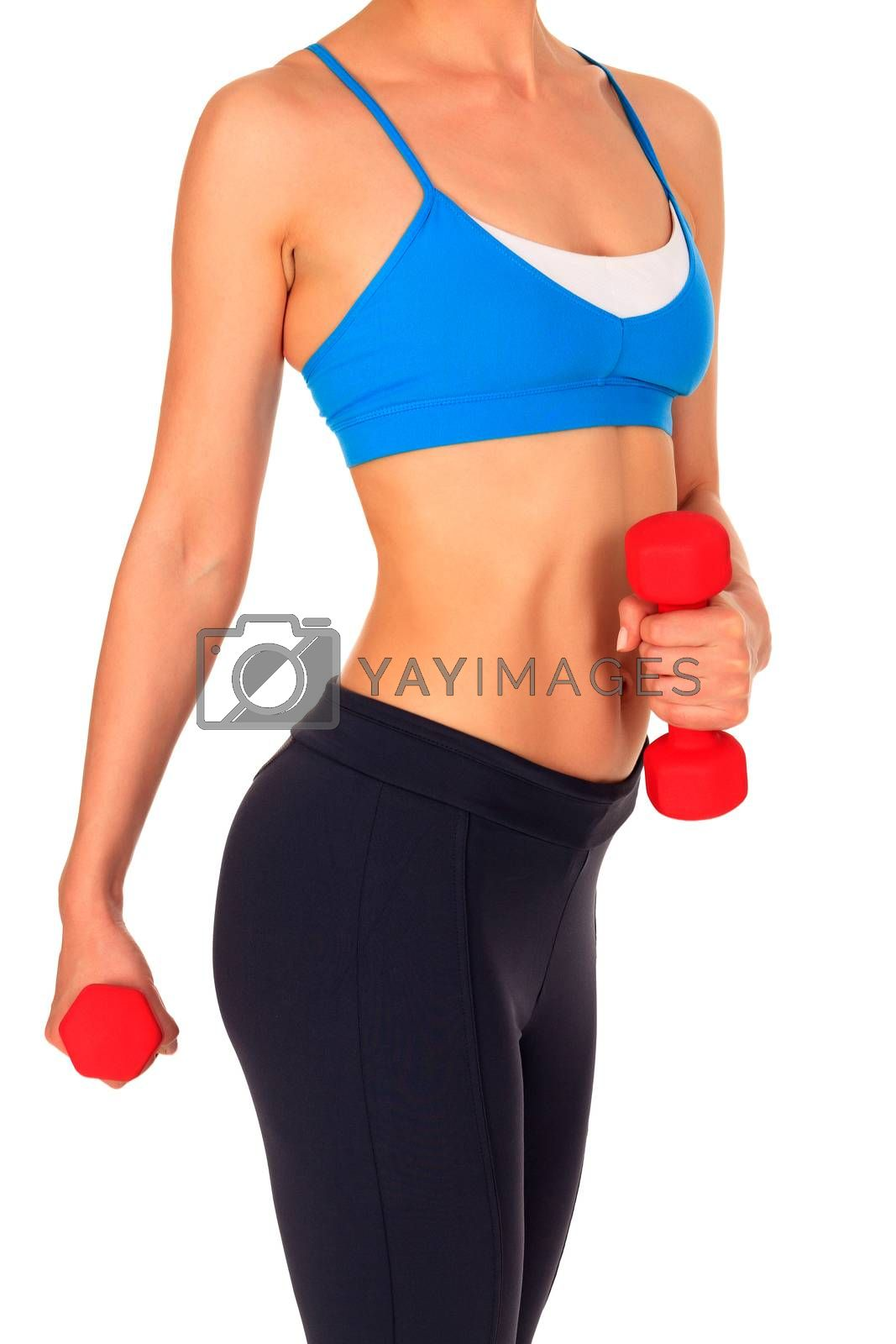 Beautiful body of a young fit slim woman lifting dumbbells isolated on white background