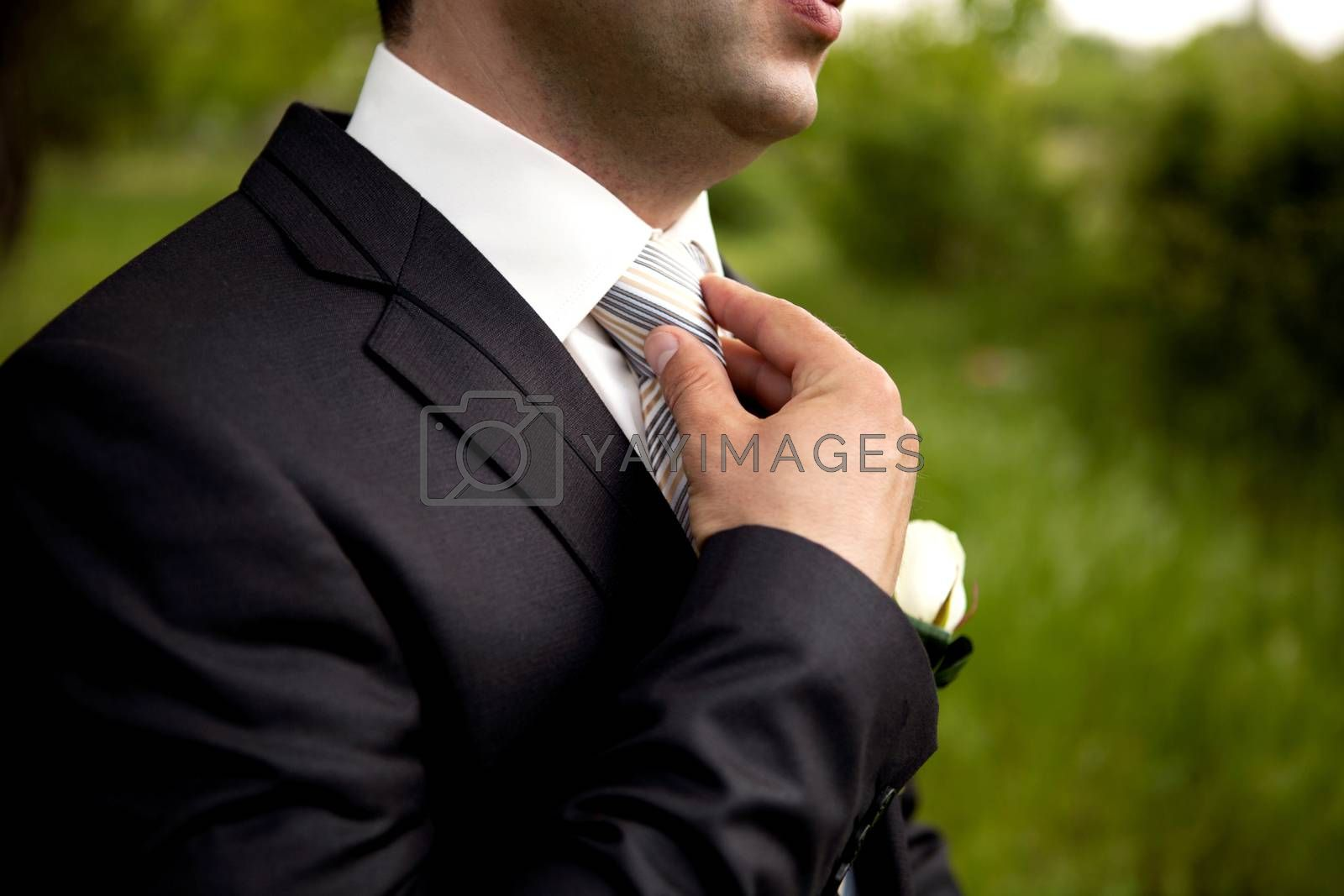 The groom in a suit, corrects a tie with his hand. Close-up composition