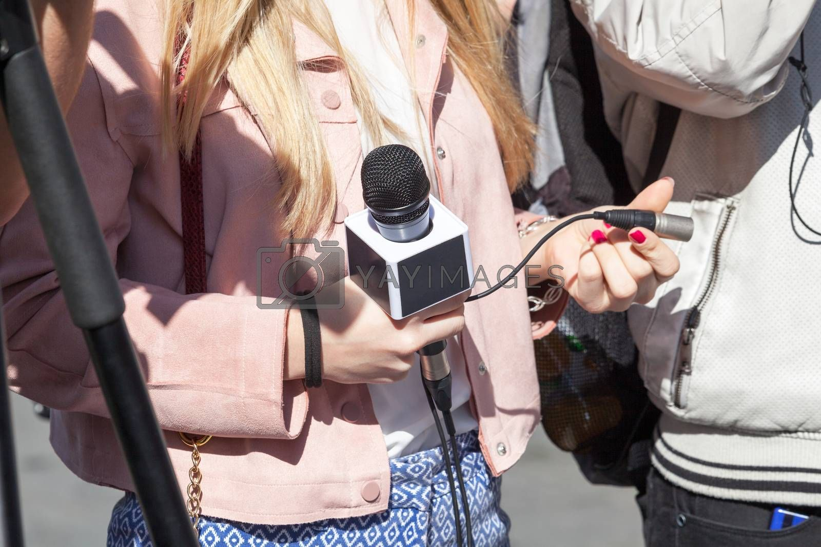 Reporter. Press conference.