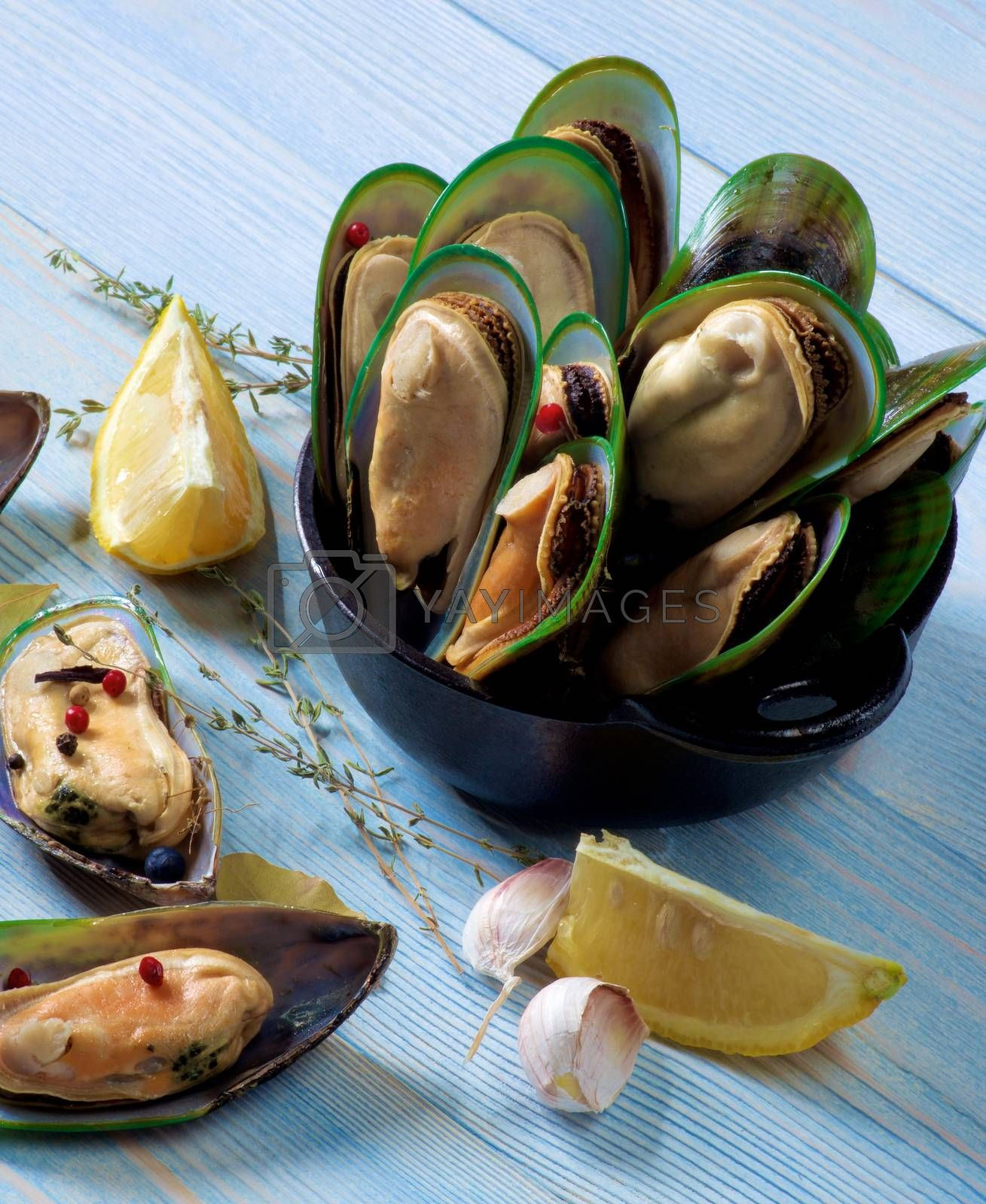 Arrangement of Fresh Boiled Green Mussels with Spices and Lemon in Black Iron Cast closeup on Blue Wooden background