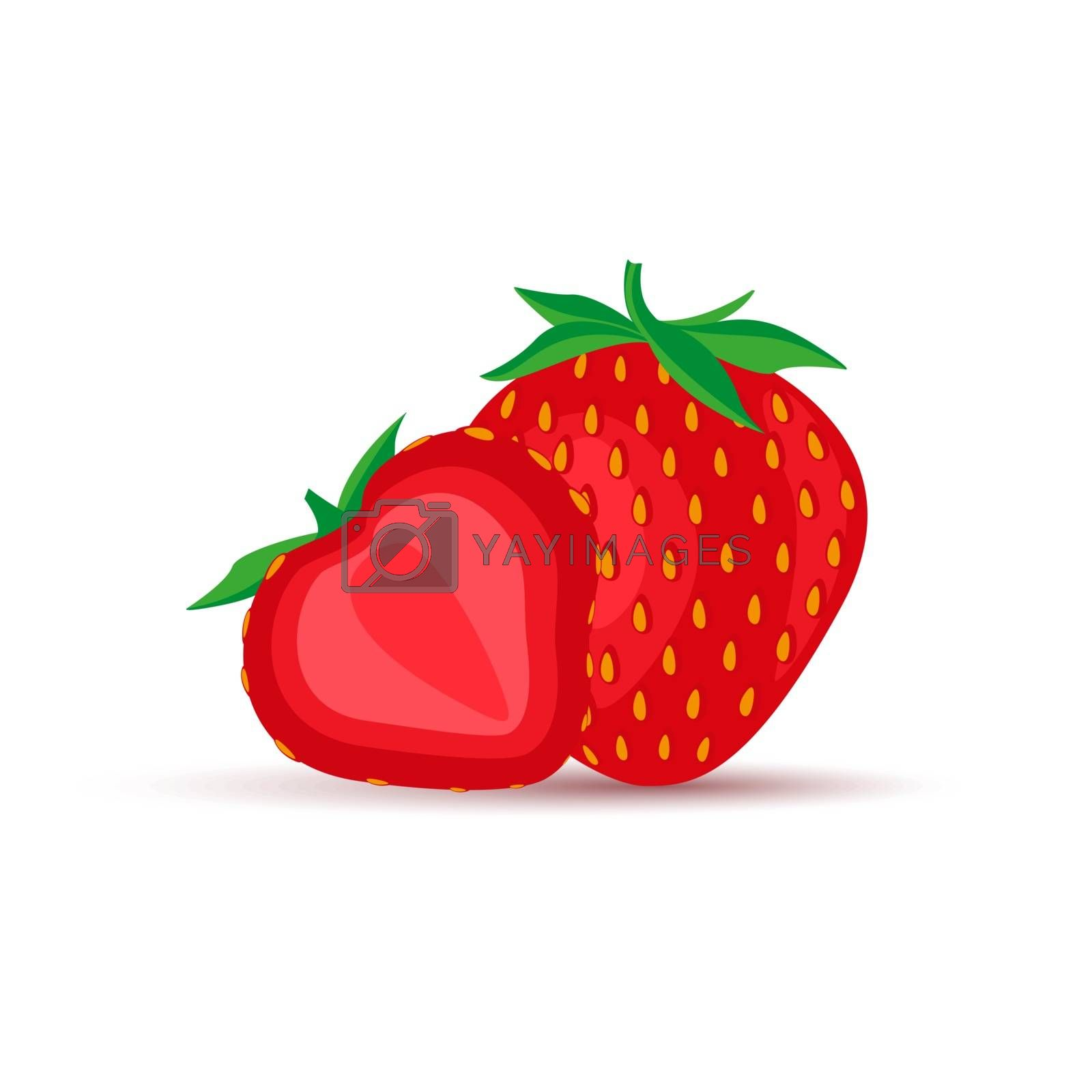 Vector illustration of strawberry fruit healthy organic food icon on a white background