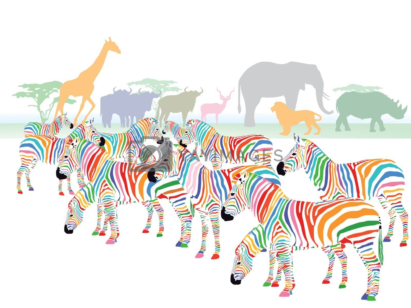 Colorful zebras in the savanna