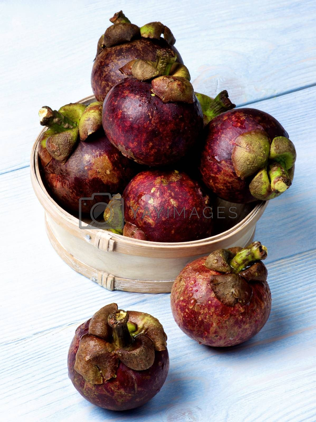 Heap of Fresh Ripe Mangosteen in Wooden Bowl closeup on Light Blue Wooden background