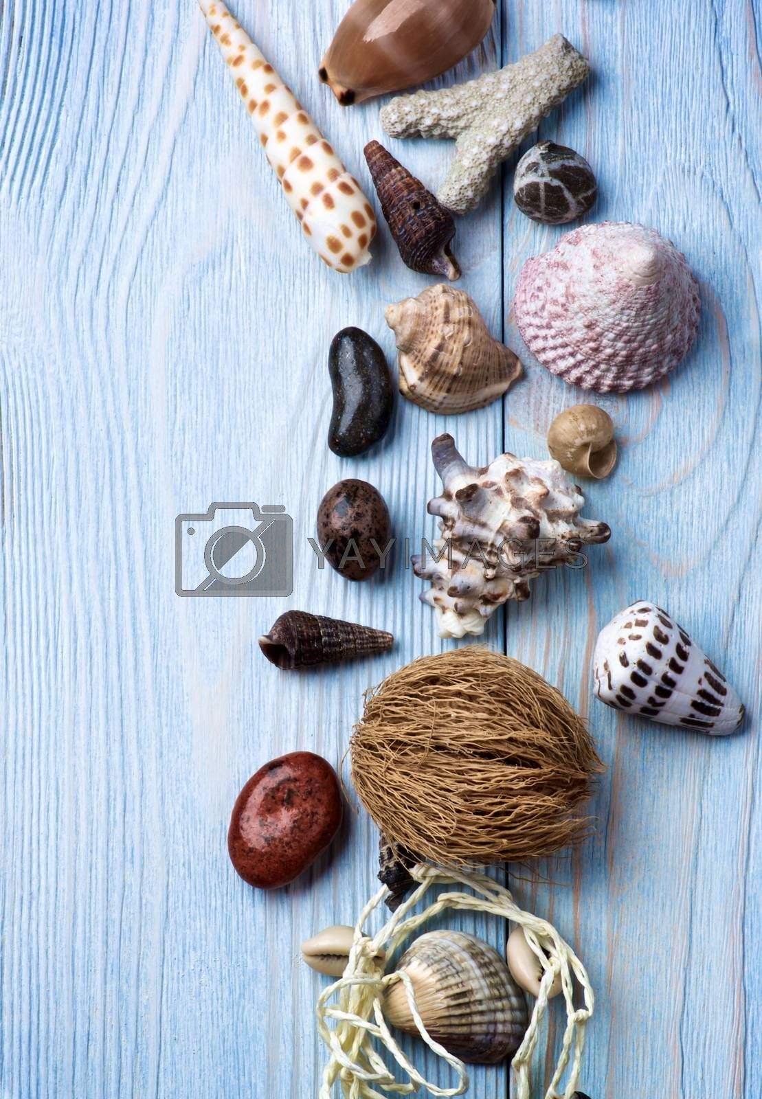 Frame of Various Shells, Pubbles, Stones and Chalk closeup on Light Blue Wooden background. Top View