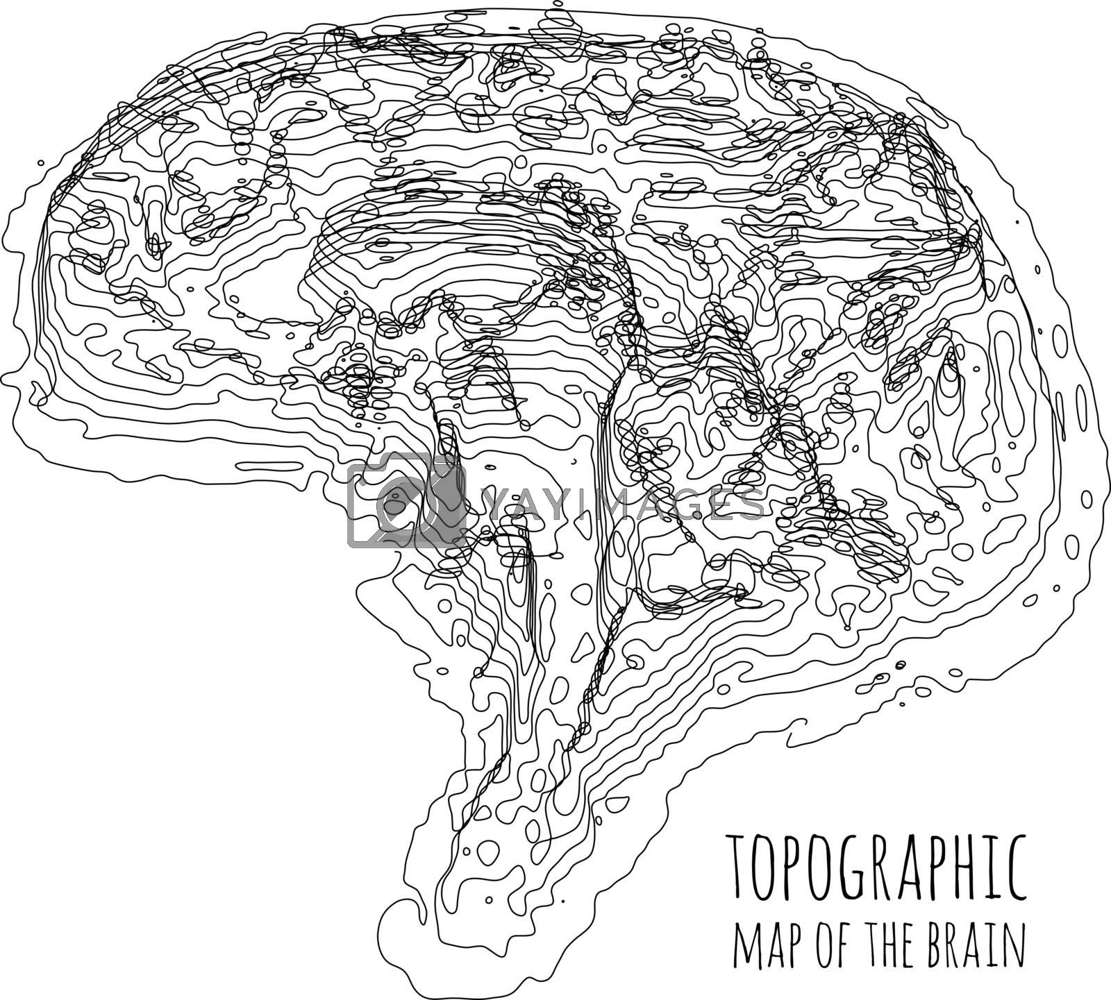 The brain in the form of a topographic map. The concept of modern technology, data transfer between neurons. Vector illustration