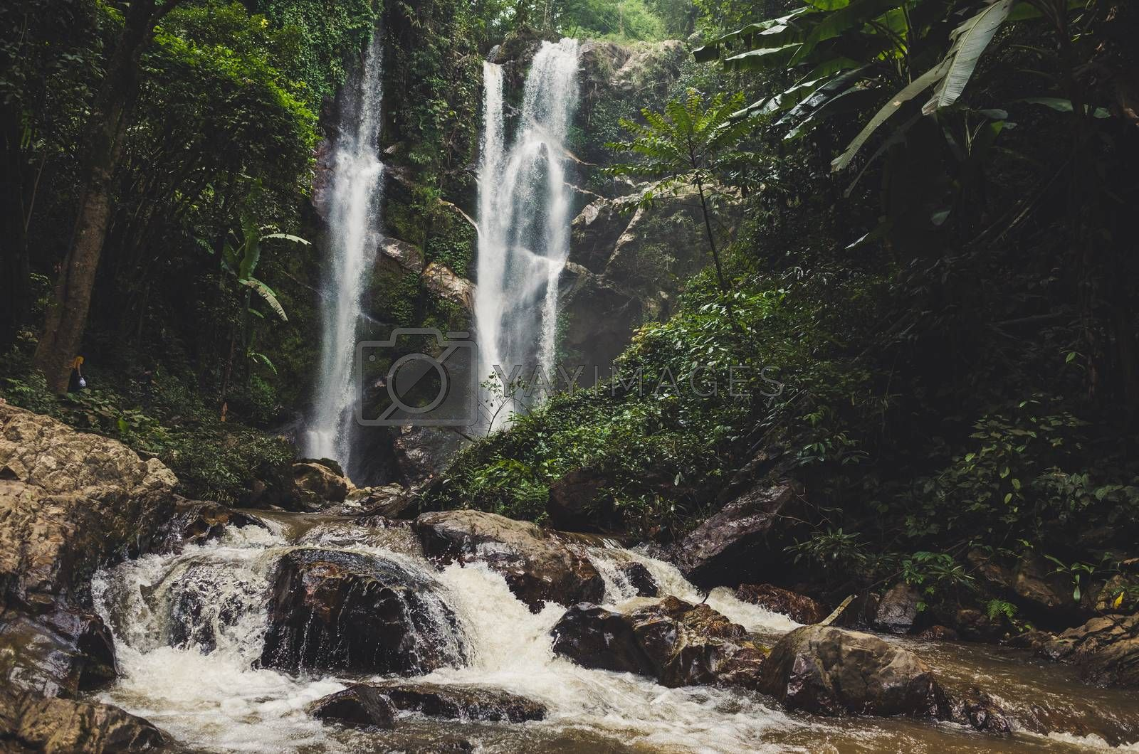 Beautiful waterfall in green forest in jungle .
