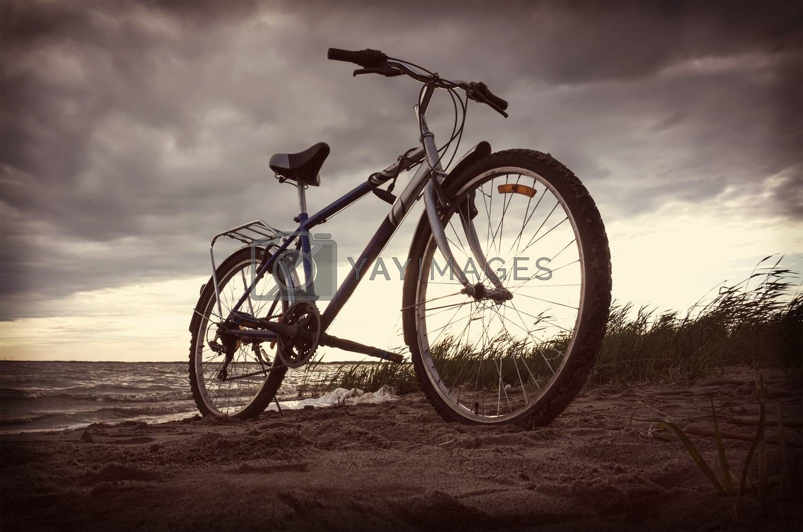 Bicycle near lake during sunset.Vintage bike near the lake in the evening, warm sunset view. Toned retro photo.