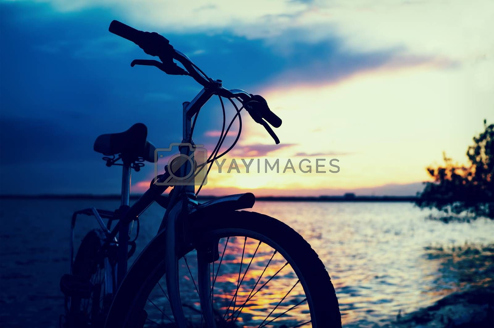 Bicycle near lake during sunset.Vintage bike near the lake in the evening, warm sunset view.