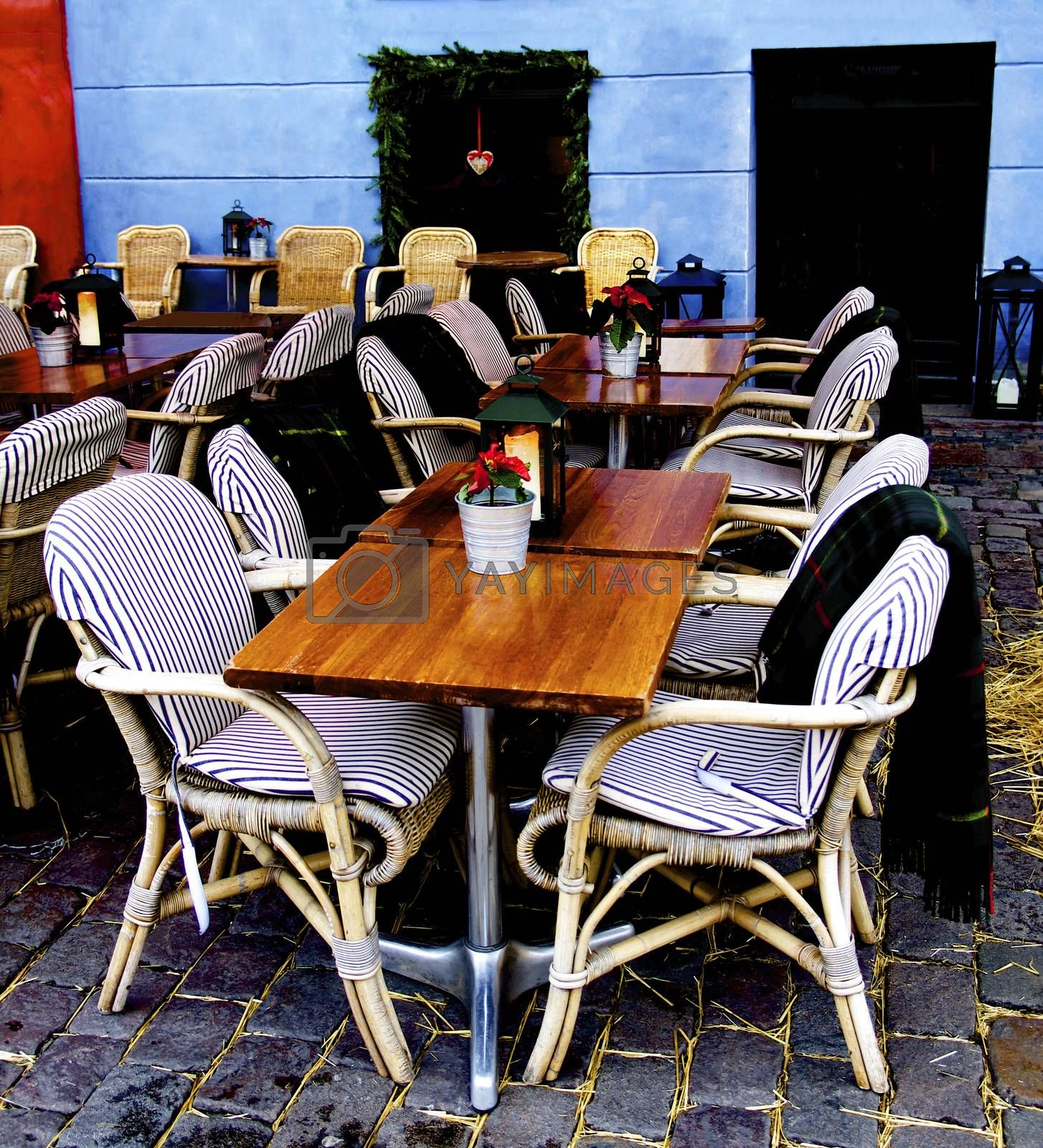 December Rustic Sidewalk Cafe with Wooden Tables, Flower Pot of Poinsettia and Plaids on Wicker Chair Outdoors