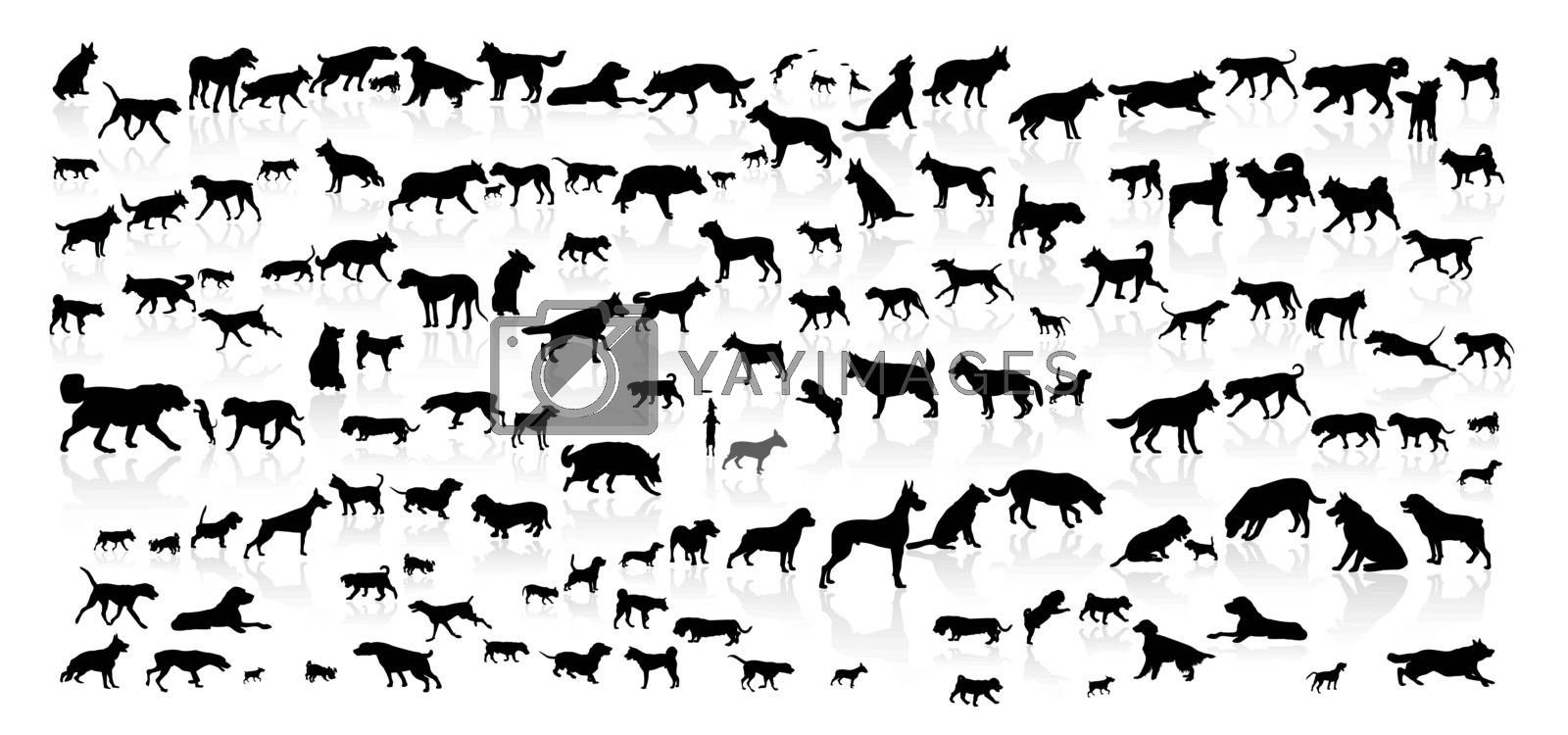 Silhouettes of dogs on a white background. Collection of dogs of various breeds.