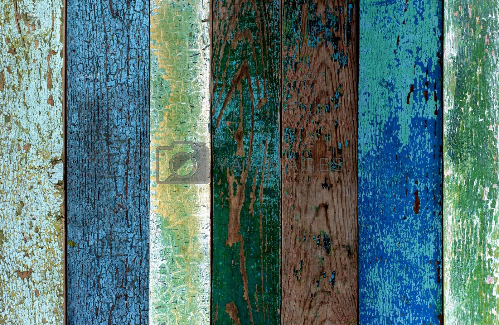 Background of Green, Blue and Grey Old Cracked Wooden Board closeup
