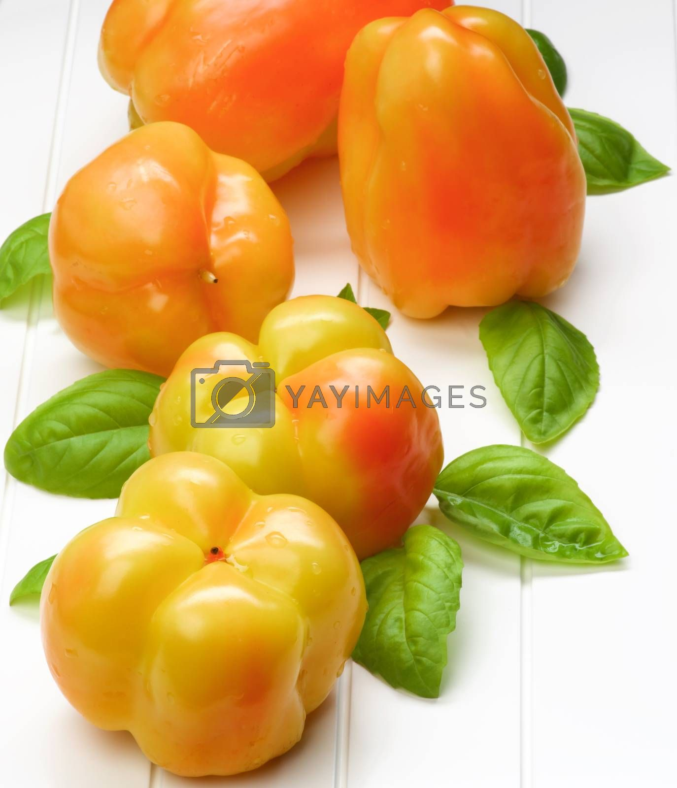 Fresh Crunchy Yellow and Orange Bell Peppers with Green Basil Leafs closeup on White Plank background