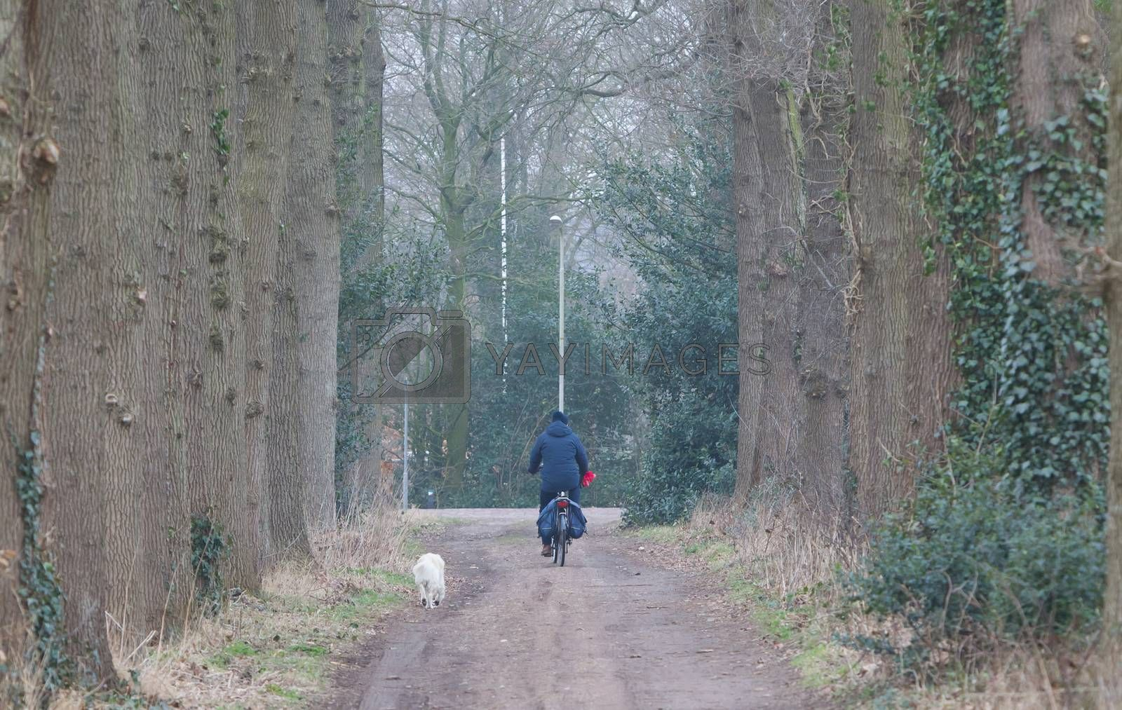 Unrecognisable old man riding a bike, his dog is following
