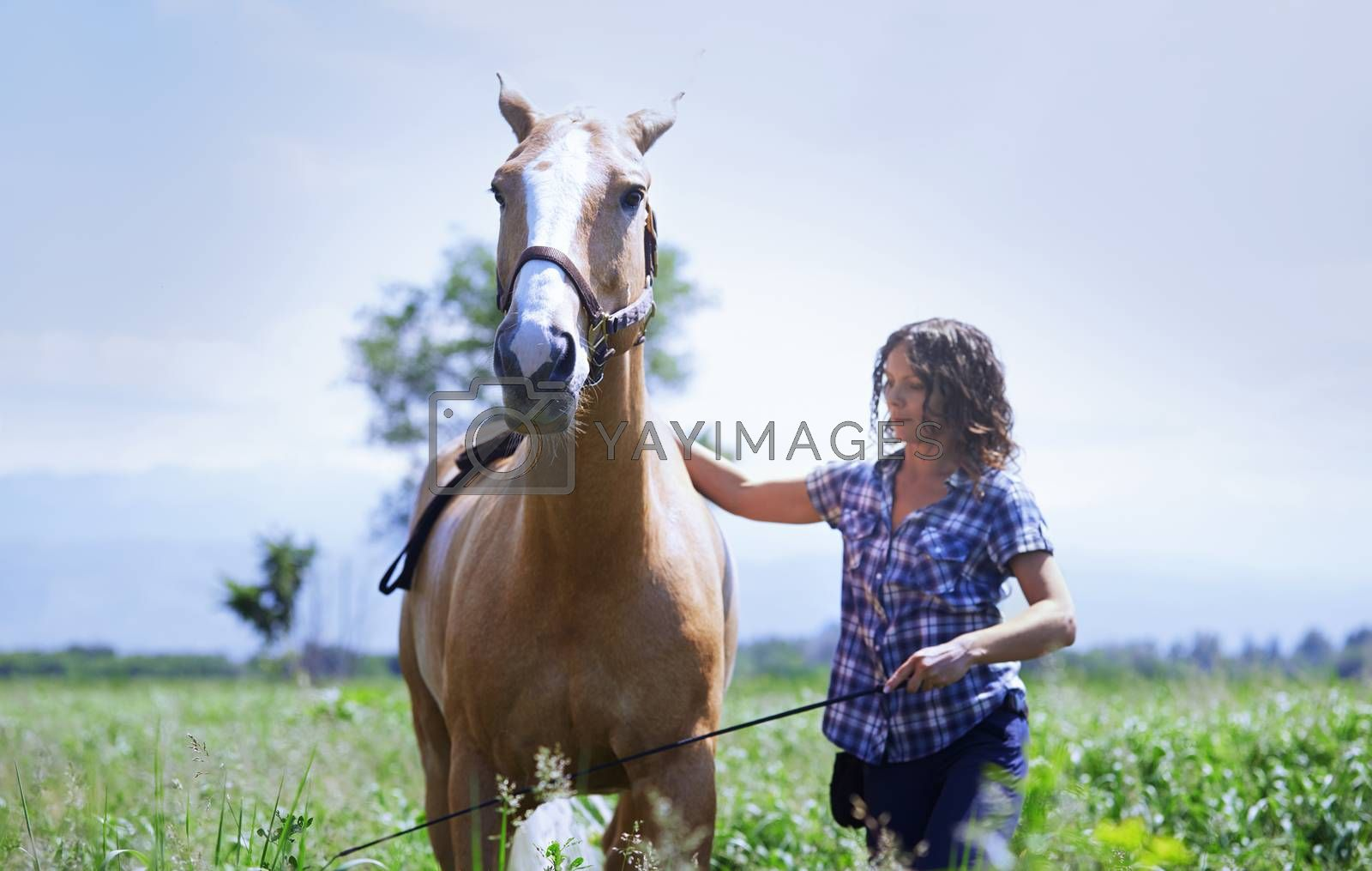 Woman training her horse at paddock