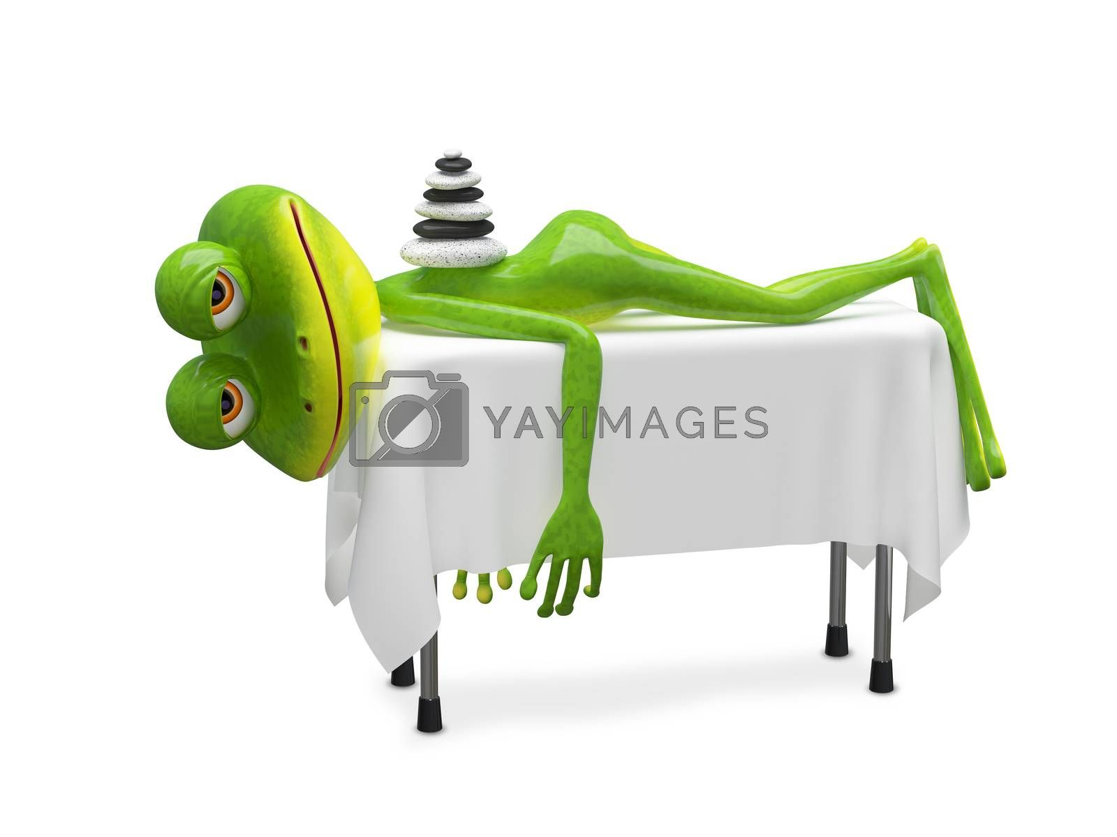 3D Illustration Frog on SPA Procedure on a White Background