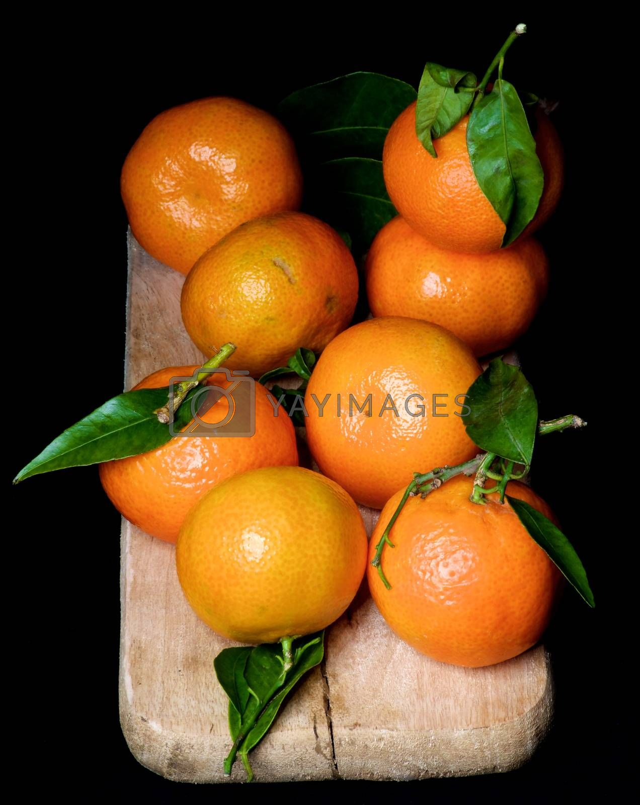 Fresh Ripe Tangerines with Leafs and Stems on Wooden Cutting Board isolated on Black background