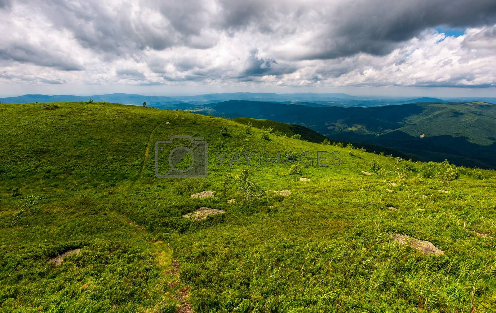grassy hills on a cloudy day in Carpathians by Pellinni