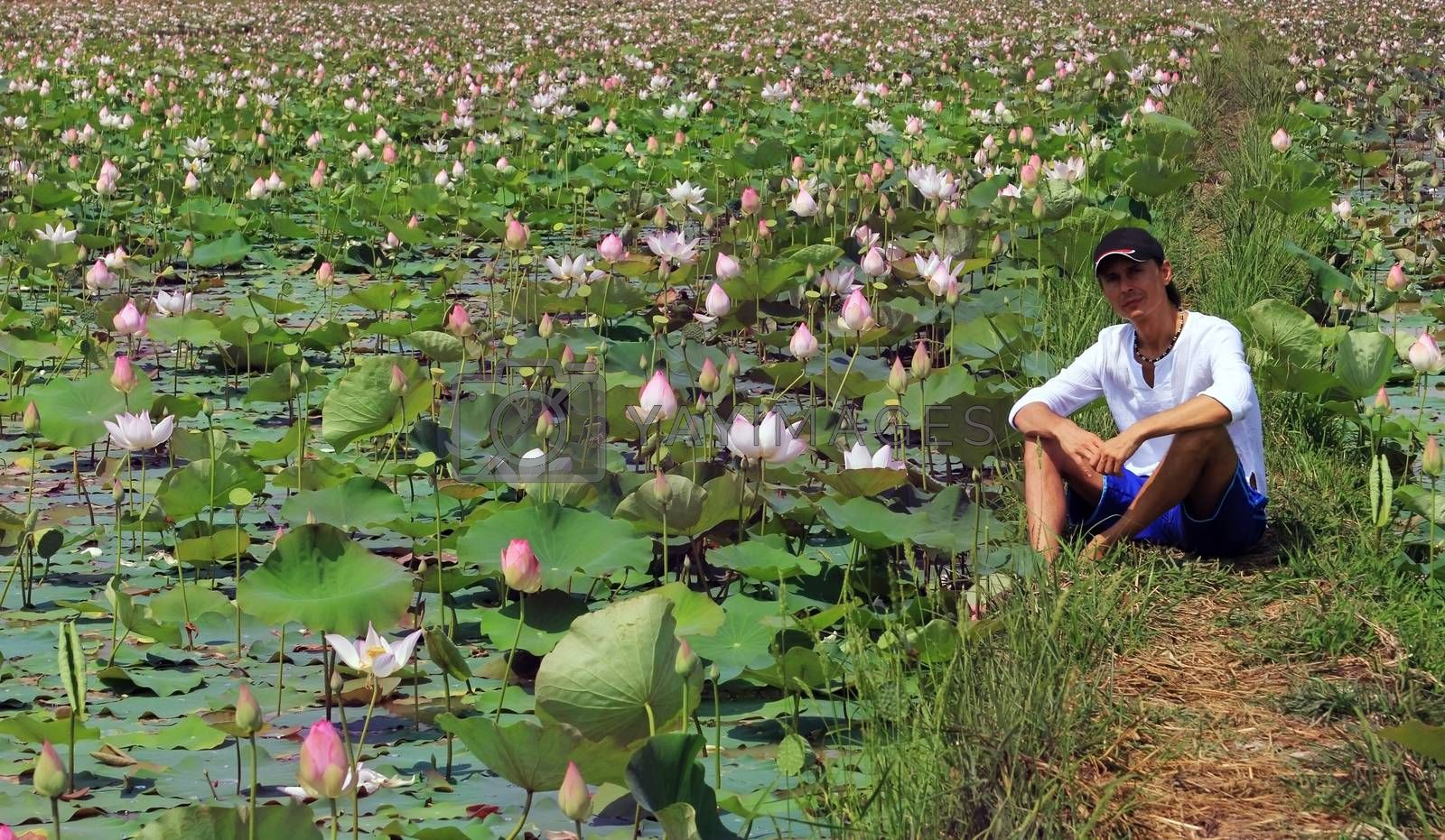 An adult man sits on a lotus field, Cambodia