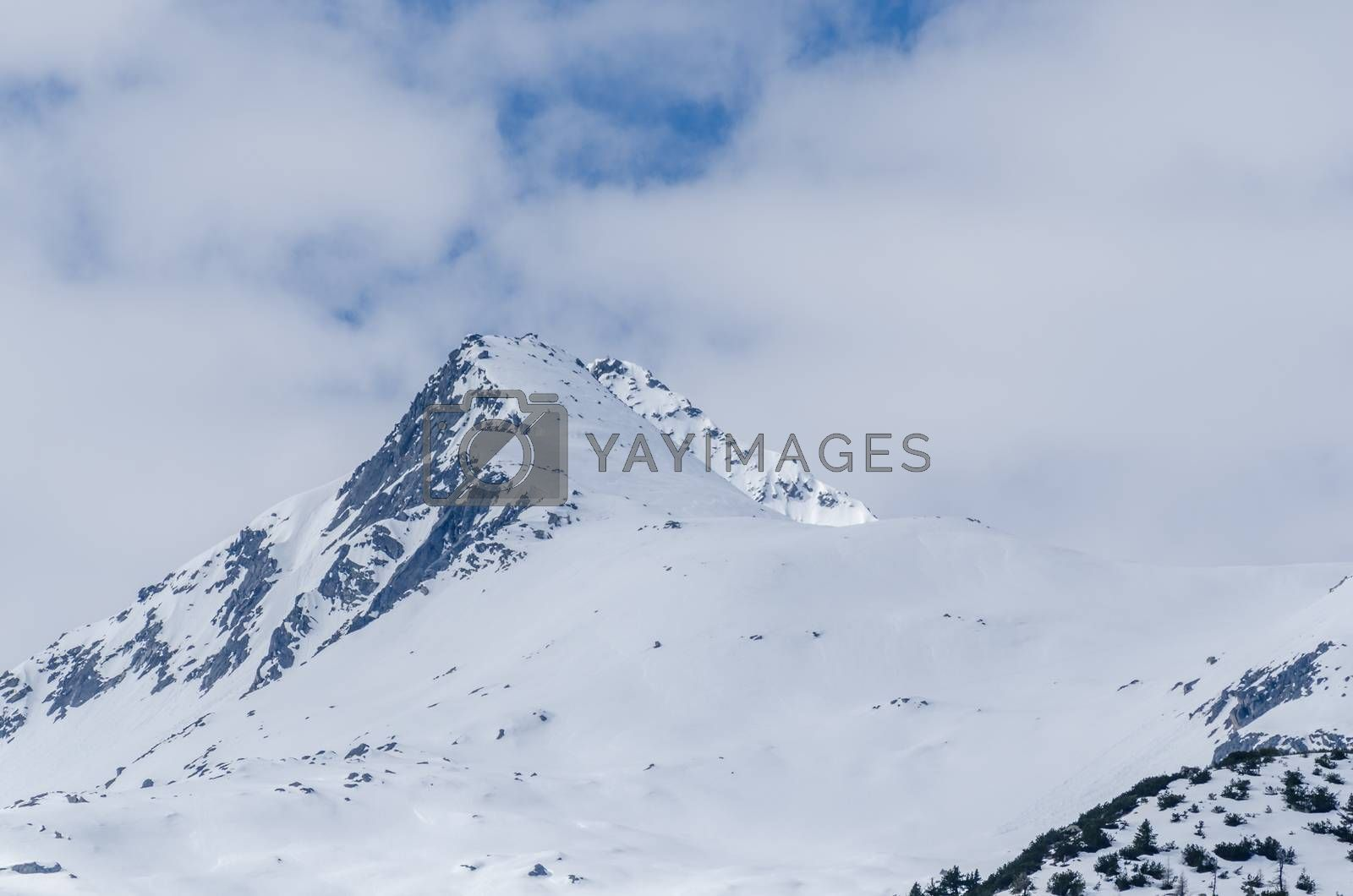 high pointed mountain with snow