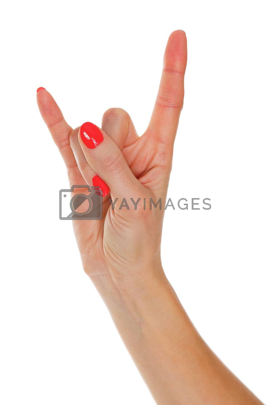 Closeup shot of female hand gesture isolated on white background