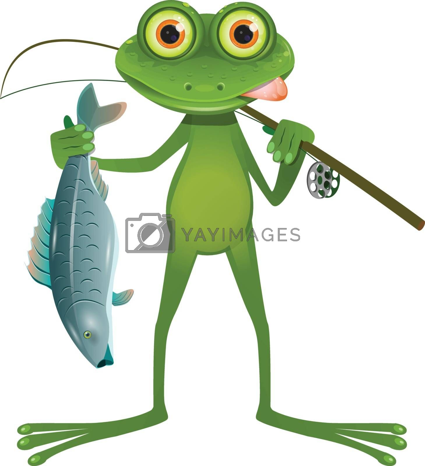 Illustration Goggle-eyed Frog Fisherman on a White Background