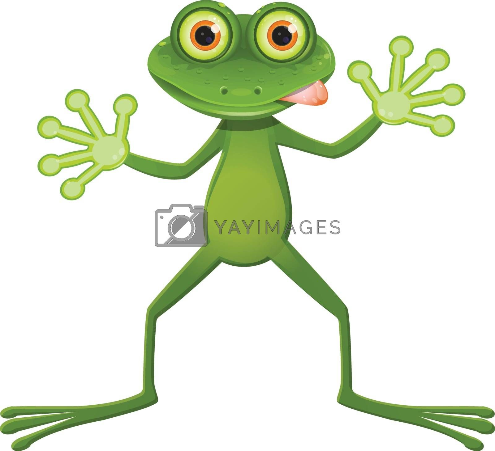 Illustration a Goggle-eyed Frog on a White Background