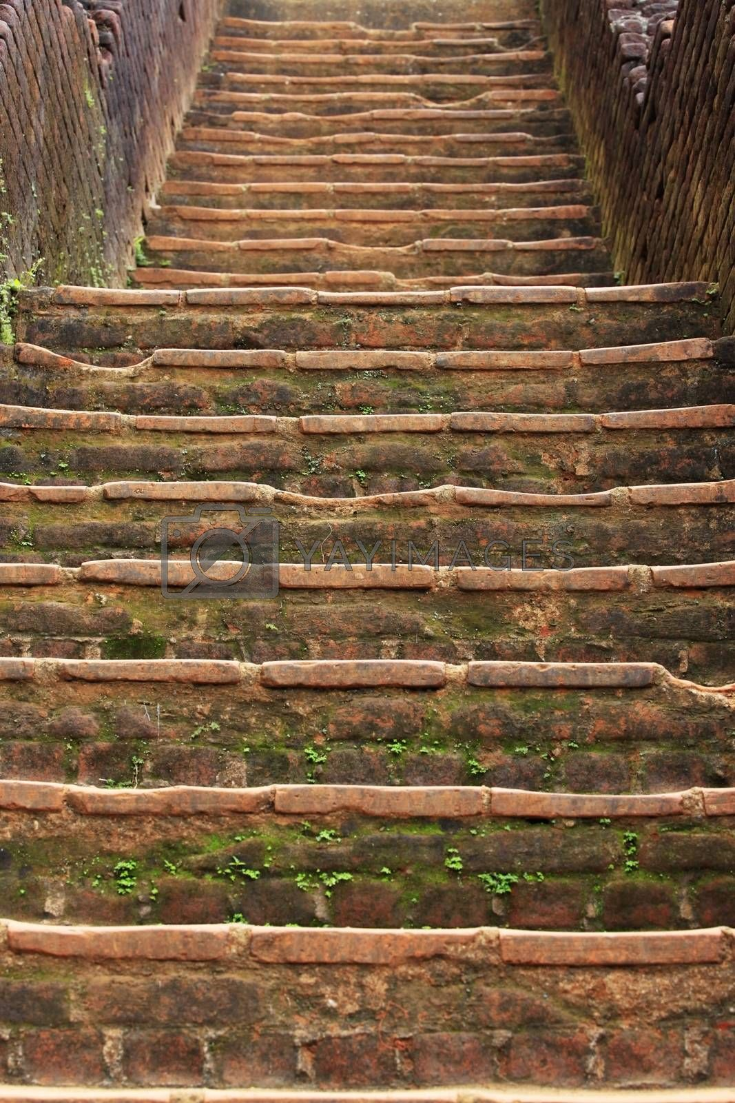 Sigiriya is an ancient palace located in the central Matale District near the town of Dambulla in the Central Province, Sri Lanka. The name refers to a site of historical and archaeological significance that is dominated by a massive column of rock nearly 200 meters (660 ft) high.