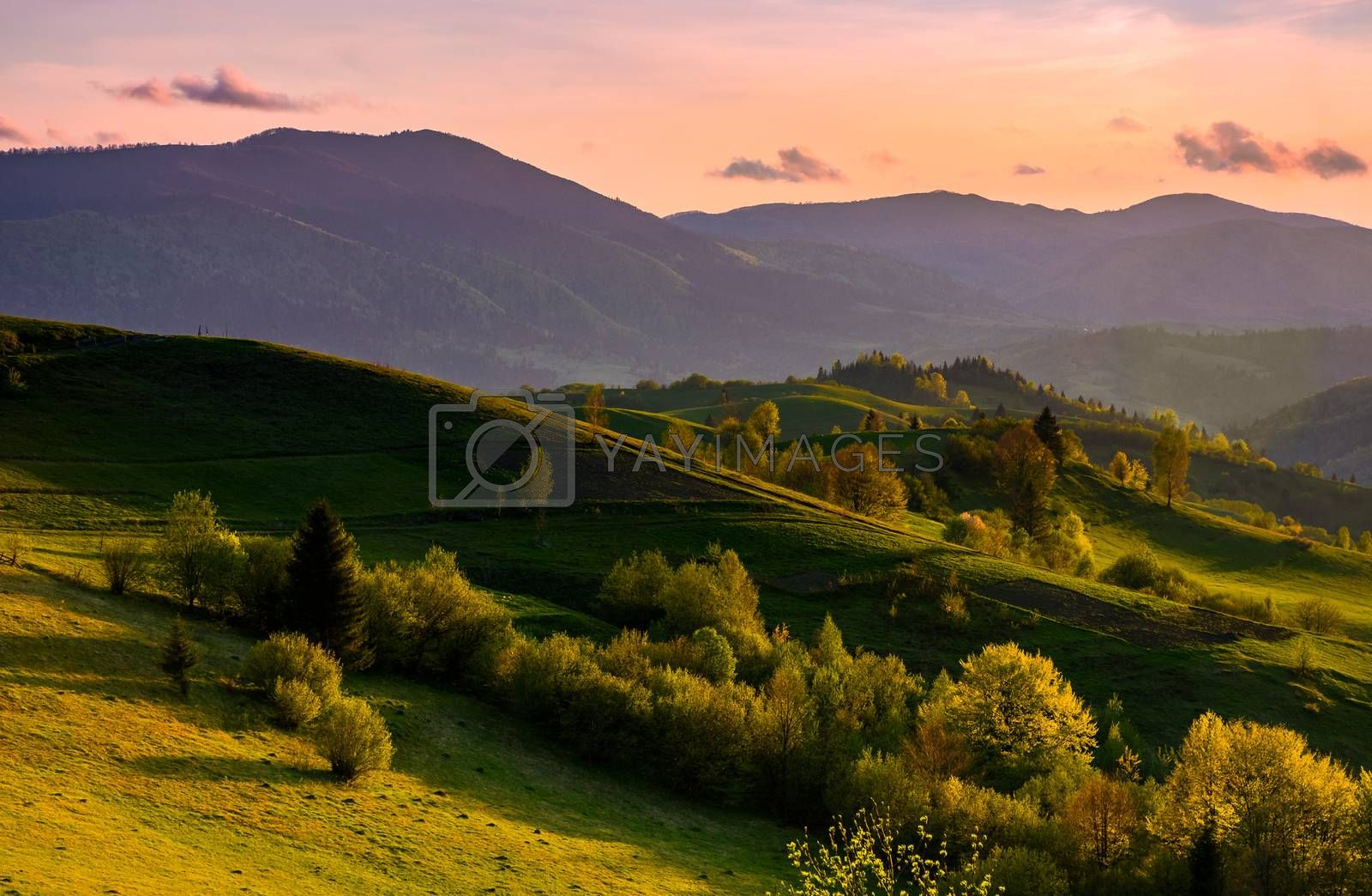 countryside landscape in mountains at sunset. grassy meadow on a hill behind the fence. spectacular evening sky with red clouds