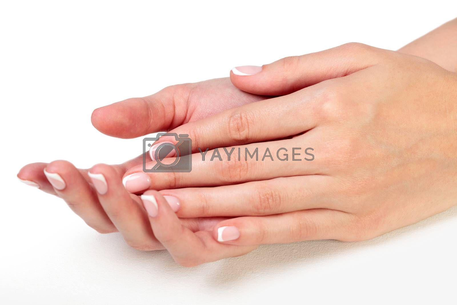 Closeup shot of beautiful female hands. Fingers with french manicured nails