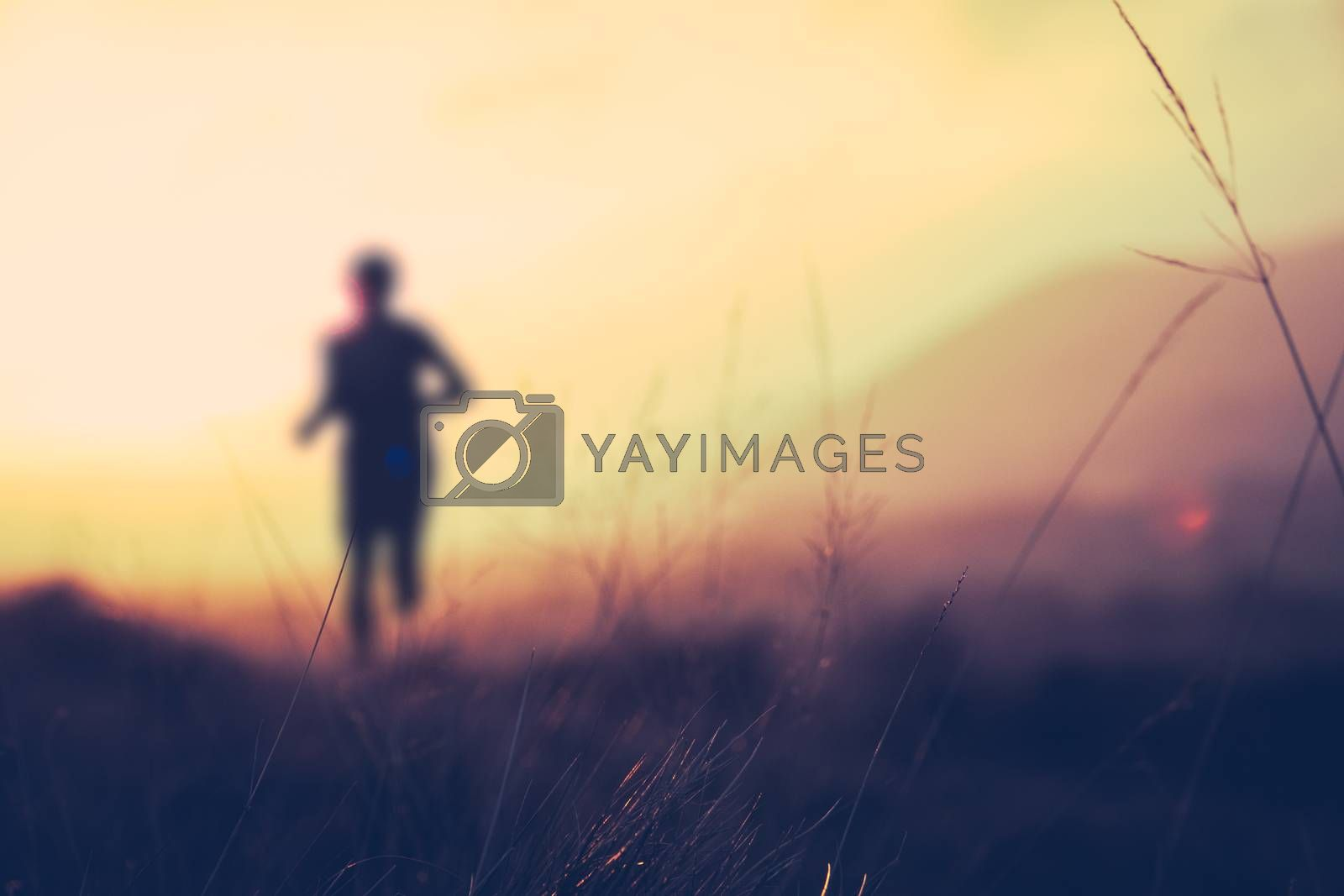 Royalty free image of Hill Runner At Sunset by mrdoomits