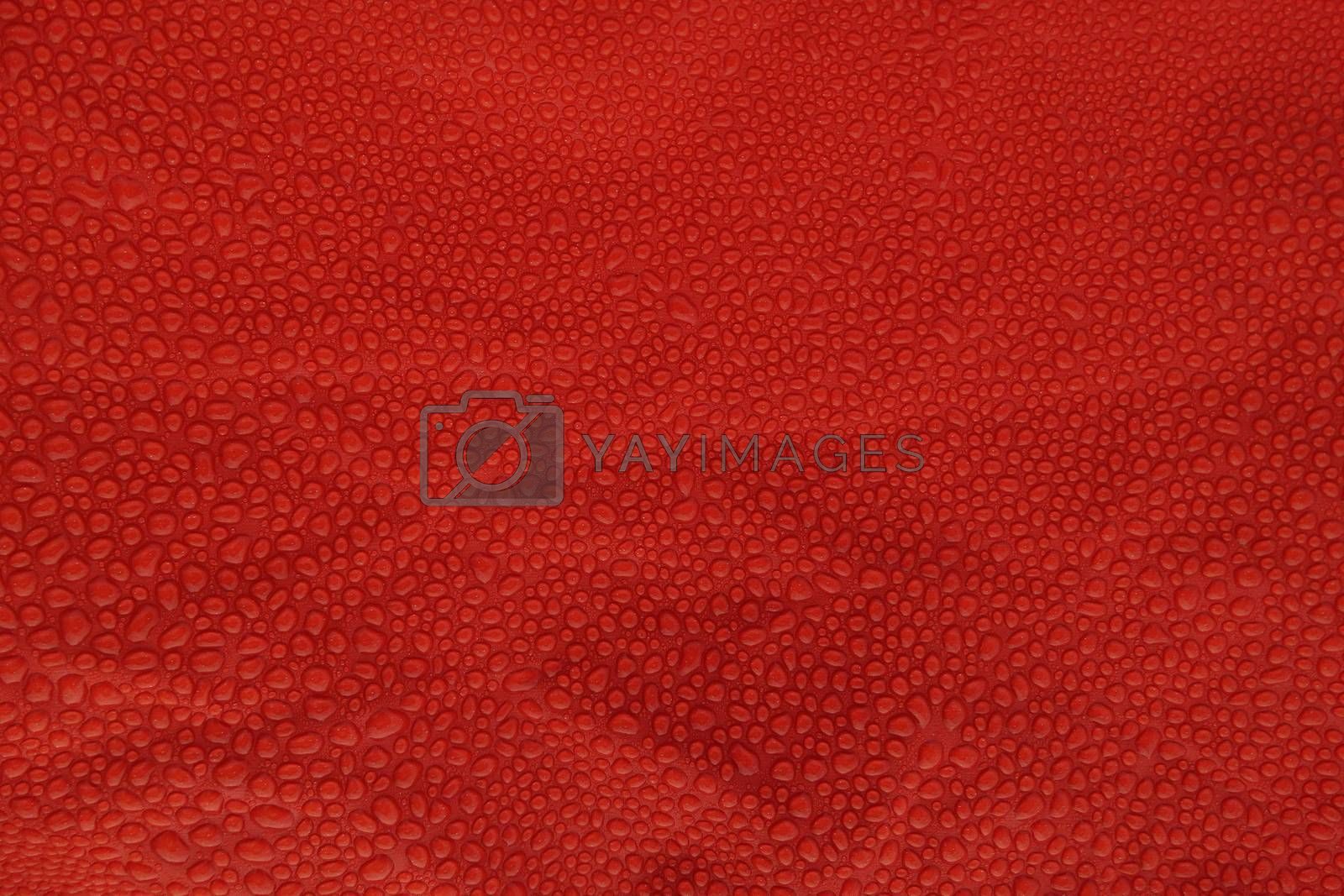 Waterdrops texture on red canvas by shoricelu