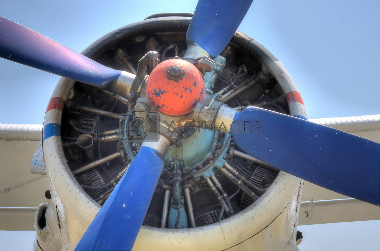 HDR Antonov 2 Plane Propeller engine detail by shoricelu